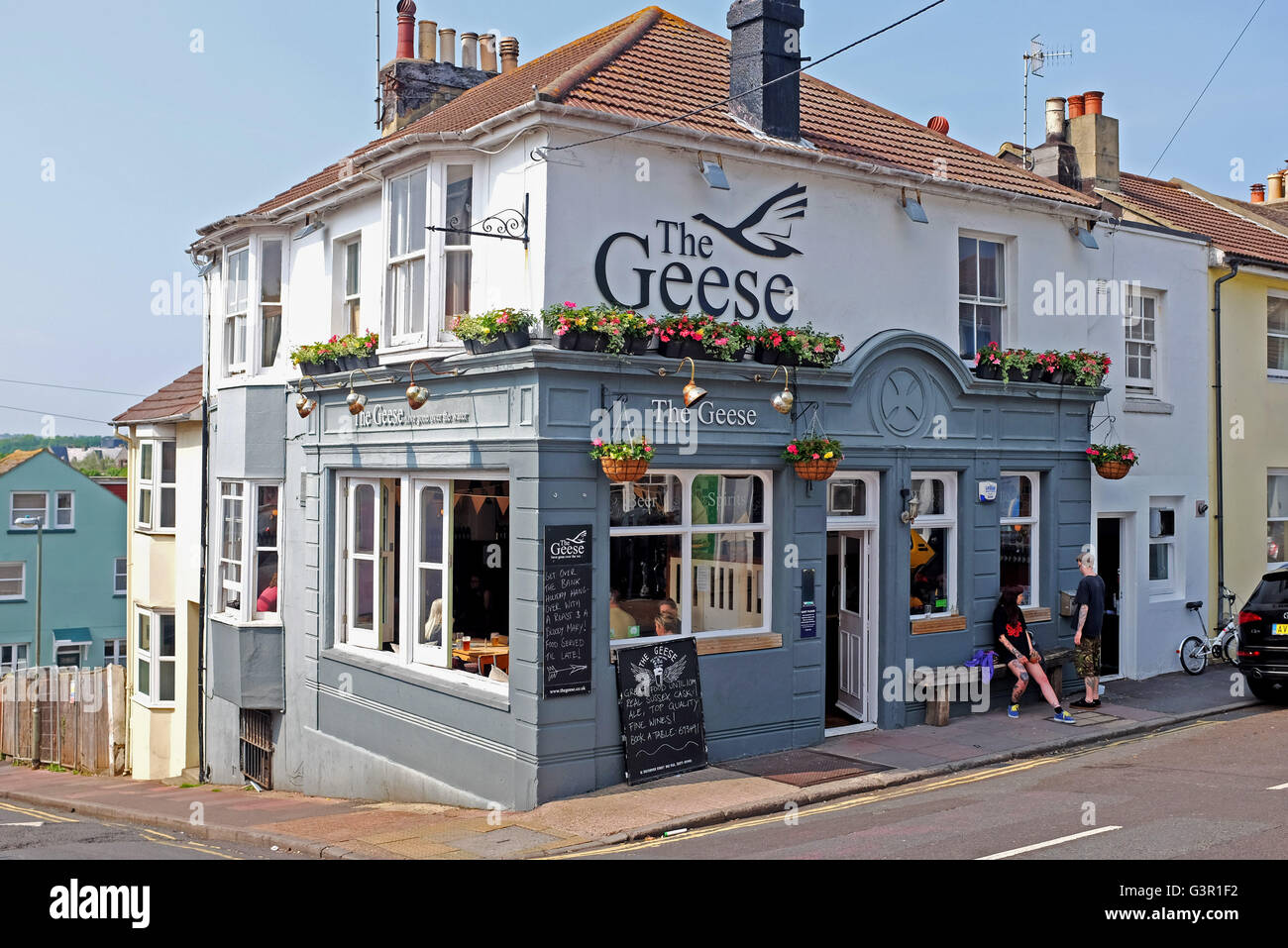 The Geese that flew across the water pub in Hanover District of Brighton UK - Stock Image