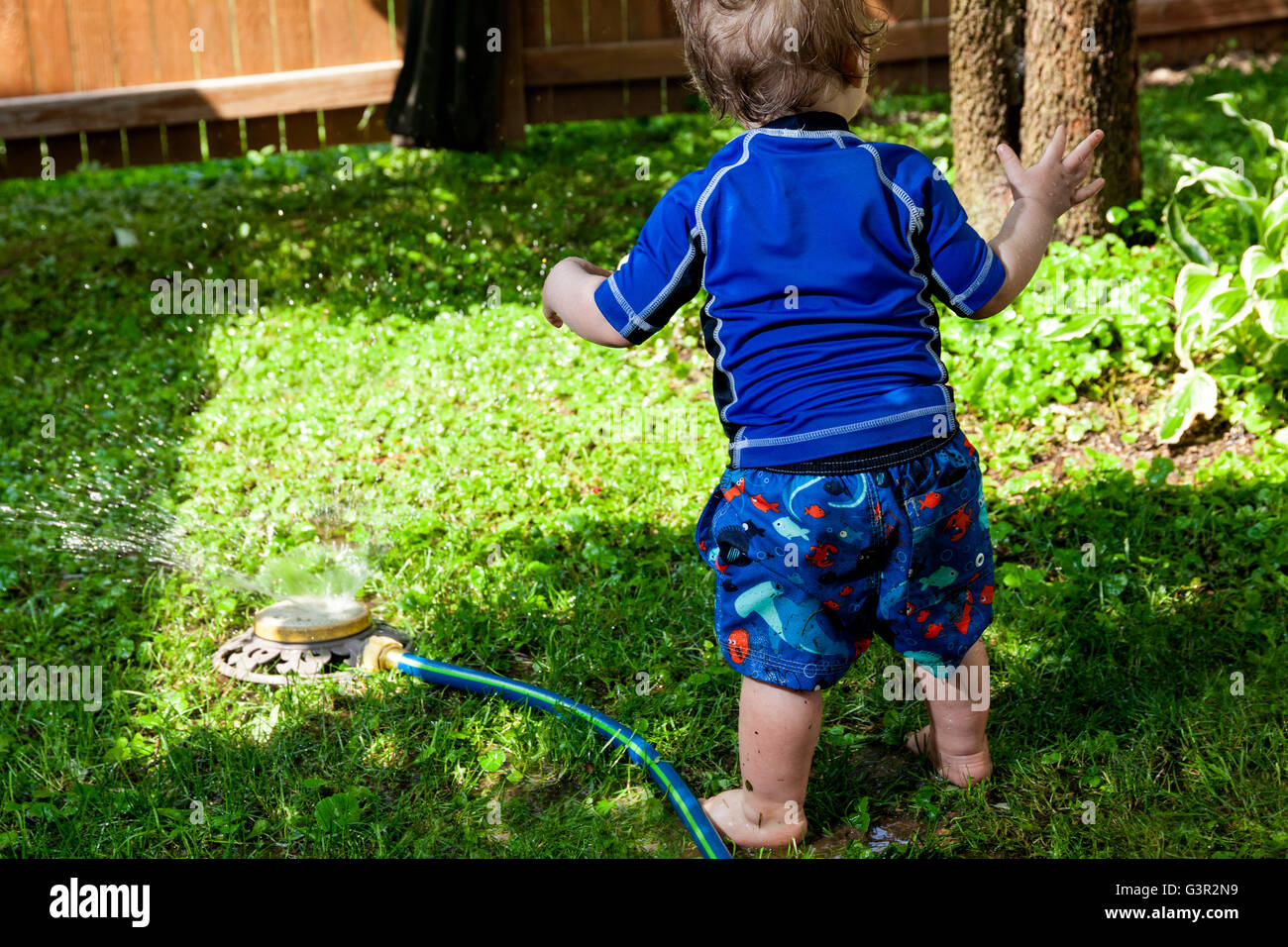 Baby Caucasian Boy and Mother playing in his backyard with a garden sprinkler - Stock Image