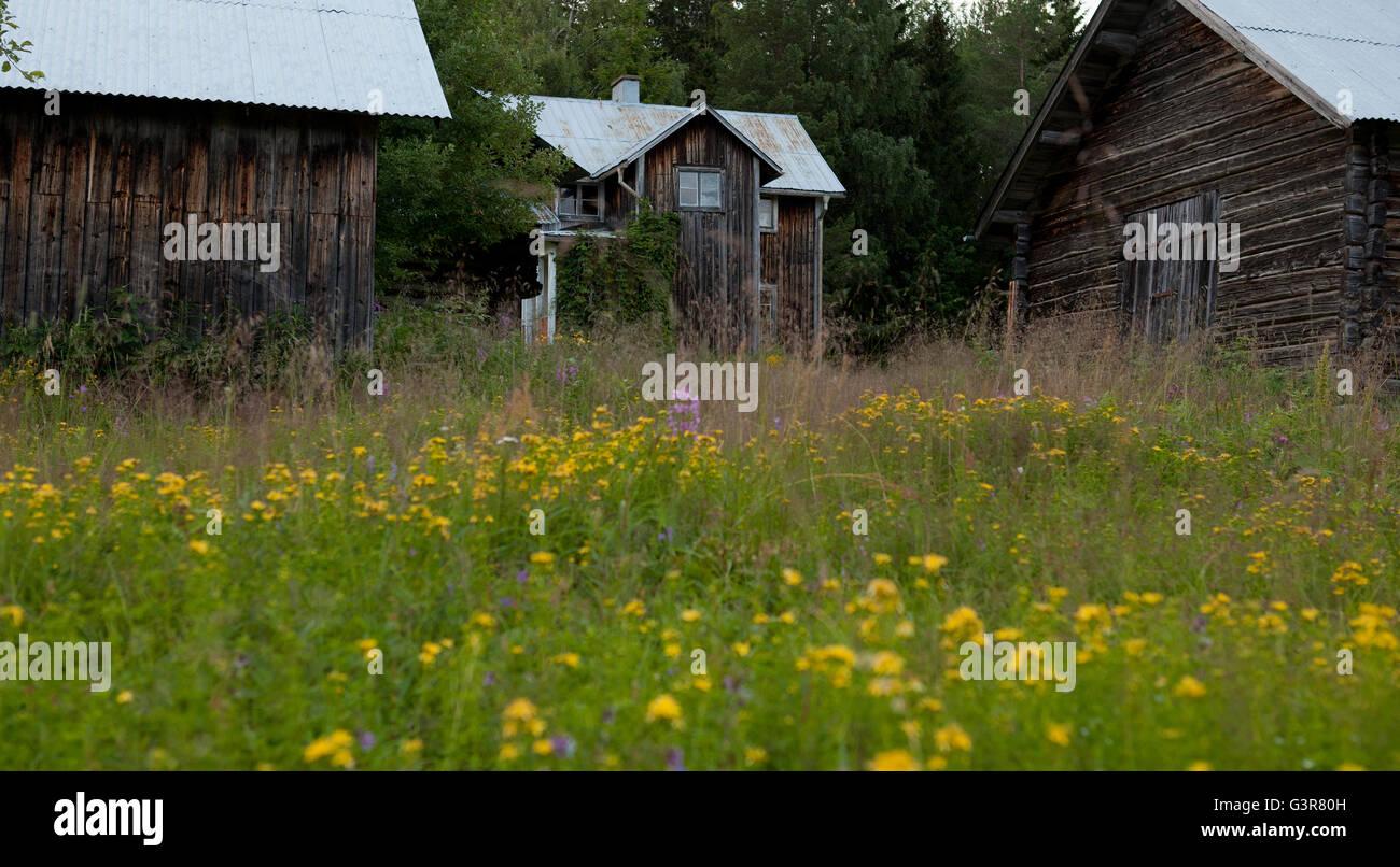 Sweden, Dalarna, Orsa Finnmark, Wooden houses - Stock Image