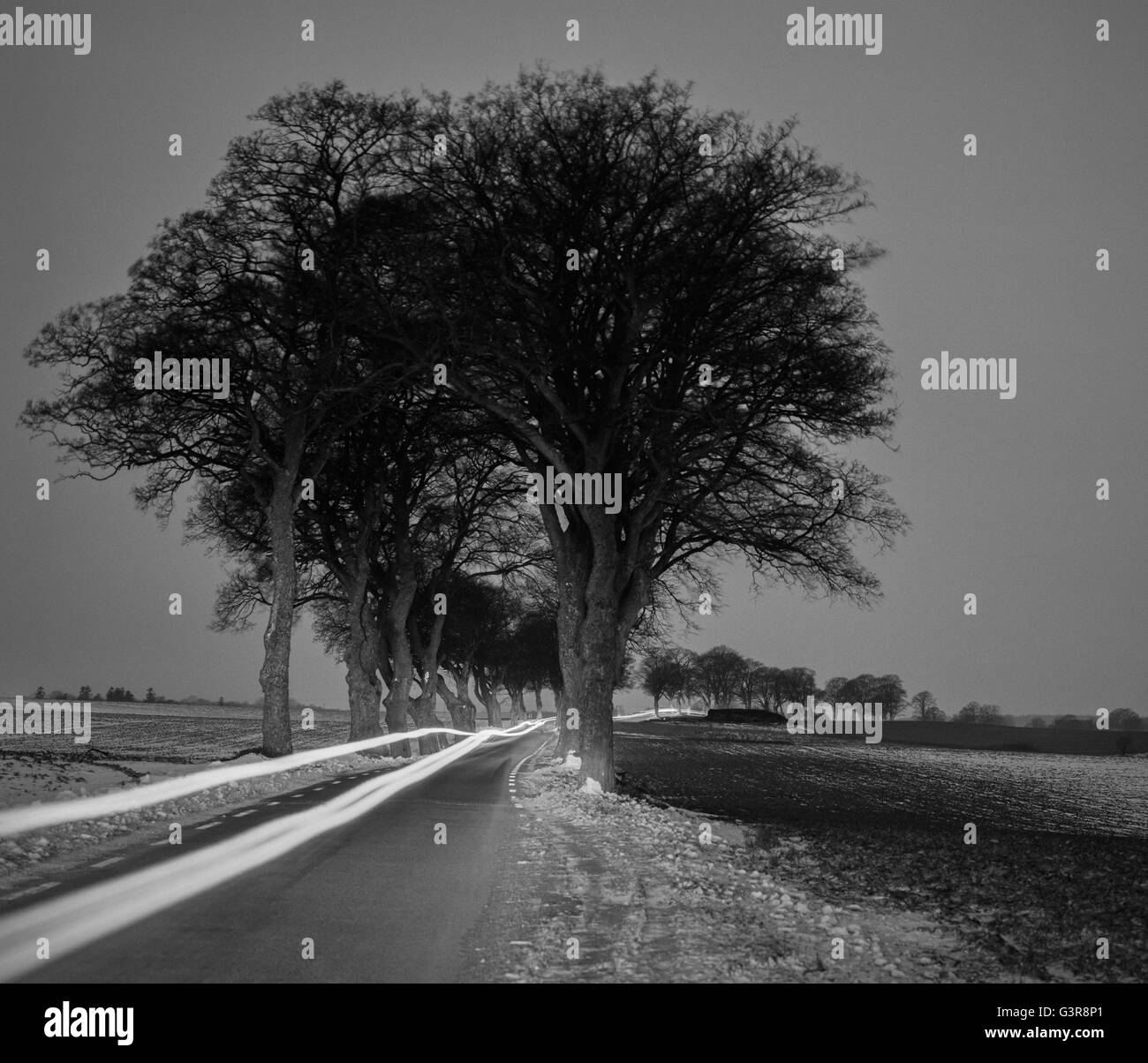 Sweden, Skane, Skurup, Light trail of car in rural road - Stock Image