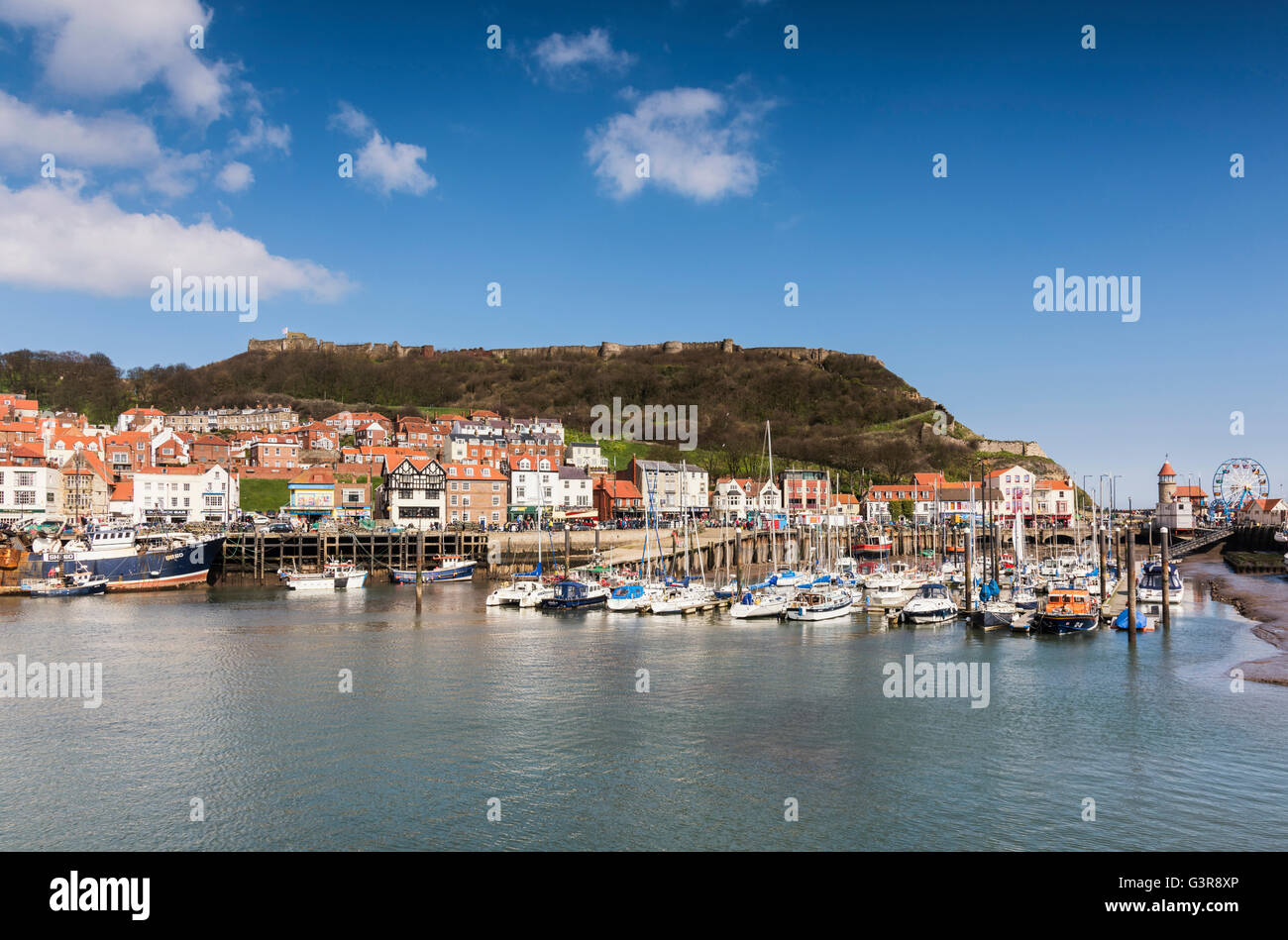 Yachts in the marina in Scarborough harbour - Stock Image