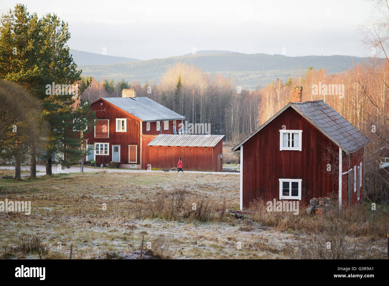 Sweden, Dalarna, Solleron, Red wooden houses in autumn landscape - Stock Image