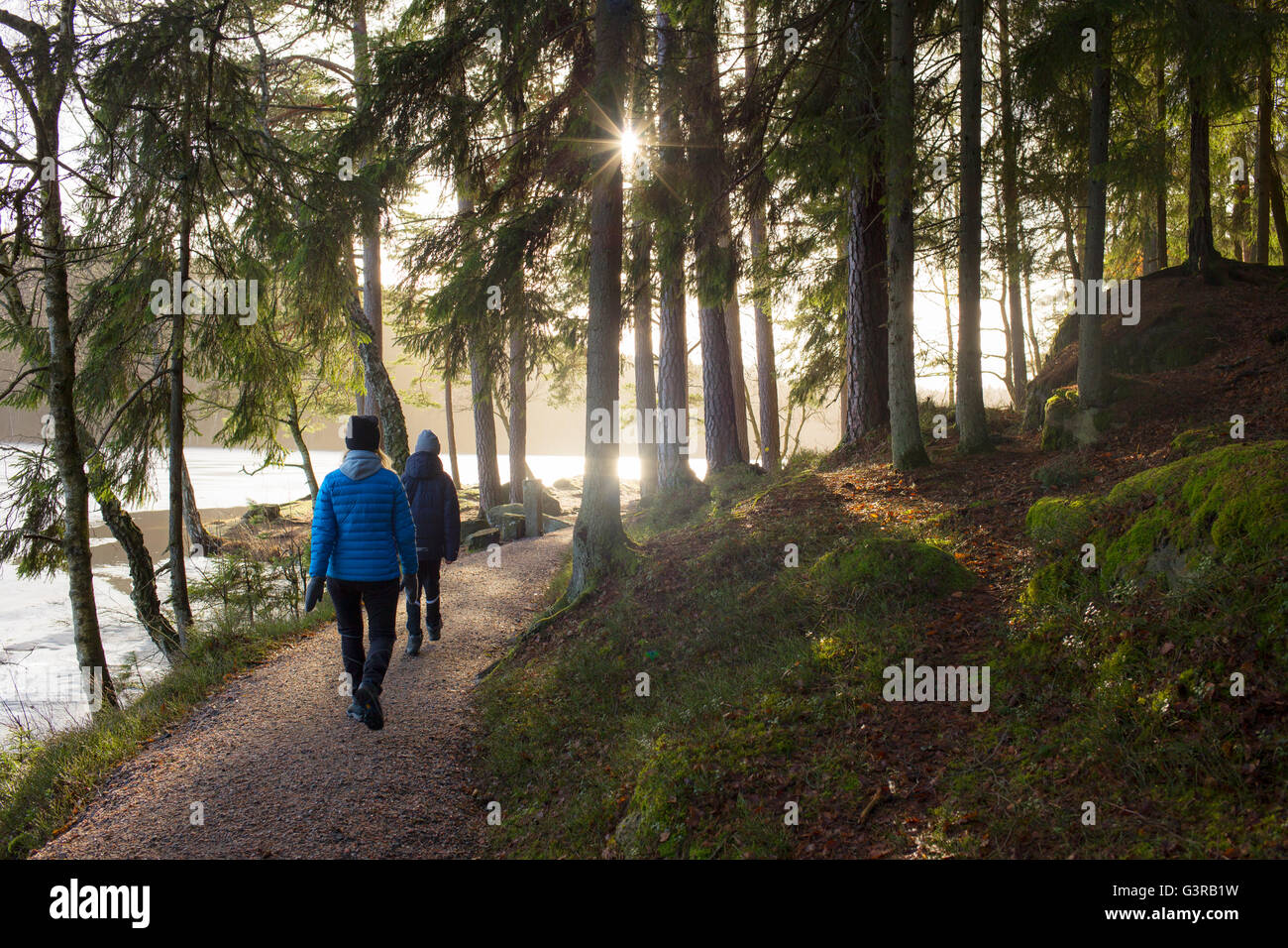 Sweden, Vastergotland, Lerum, Stamsjon, Mother and son (12-13) walking in forest - Stock Image