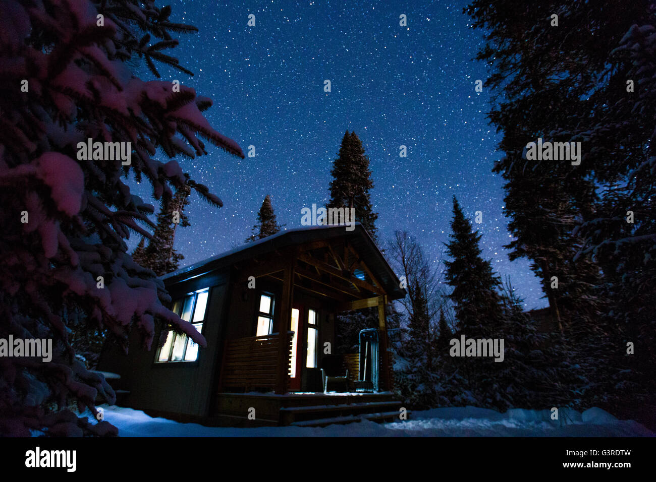 Magic winter night in Mont-Tremblant National Park, Quebec. - Stock Image