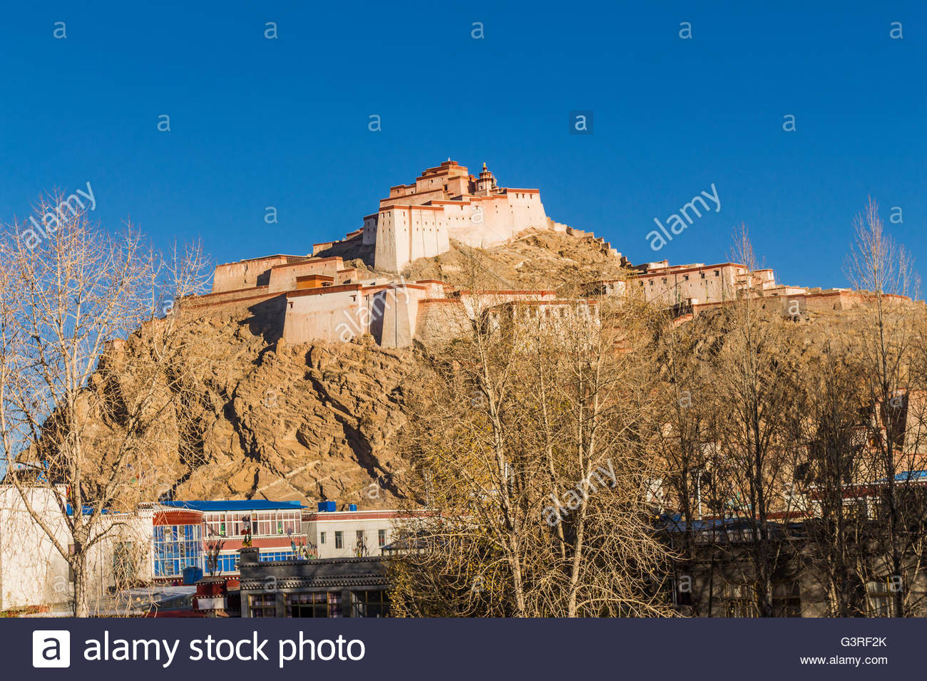 Image of the Pelchor Chode Temple taken from a Gyanstse Side Street - Stock Image