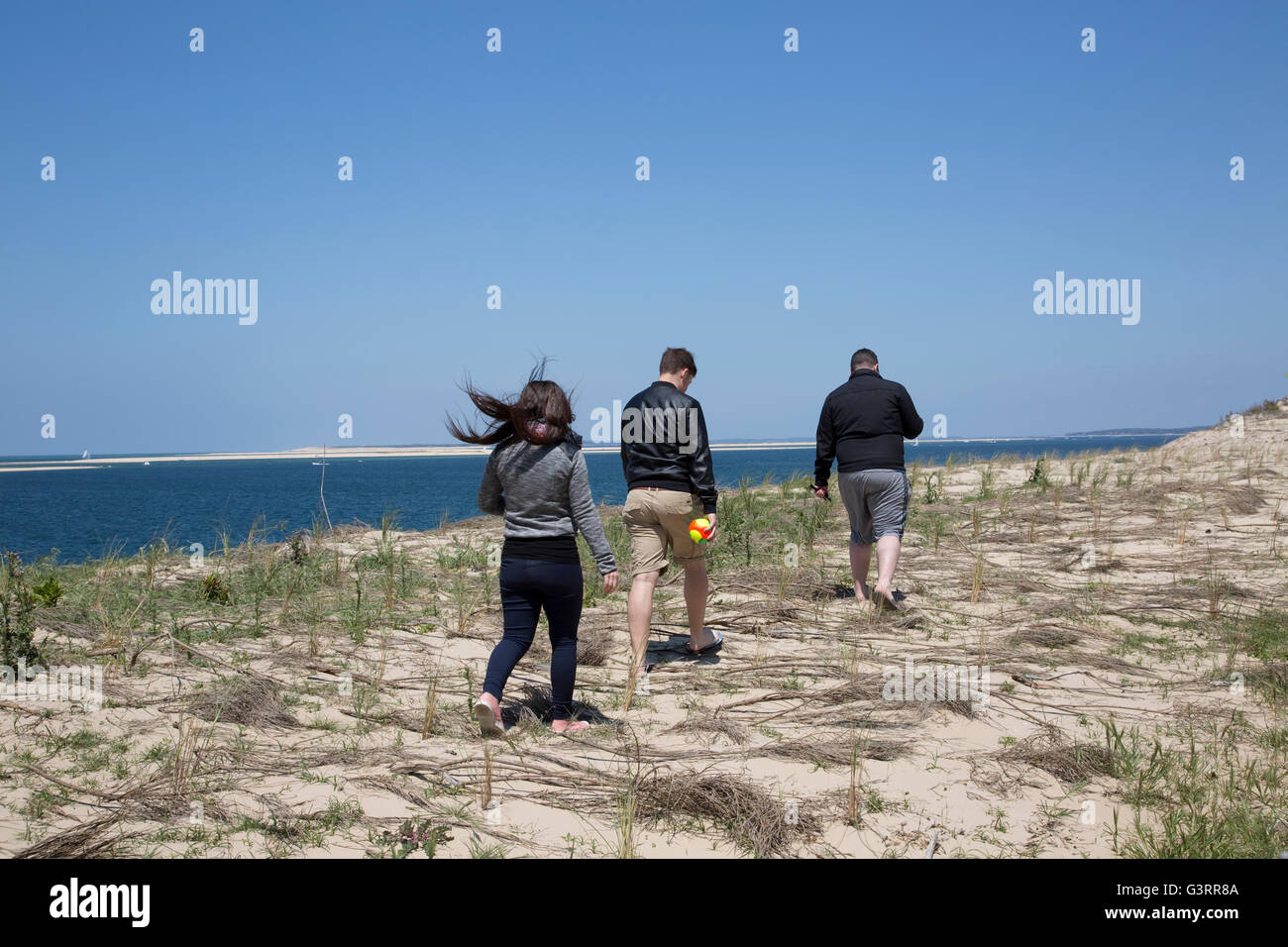 People trampling protected area with Marram grass planted to help stabilise sand dunes Great Dune of Pyla France - Stock Image