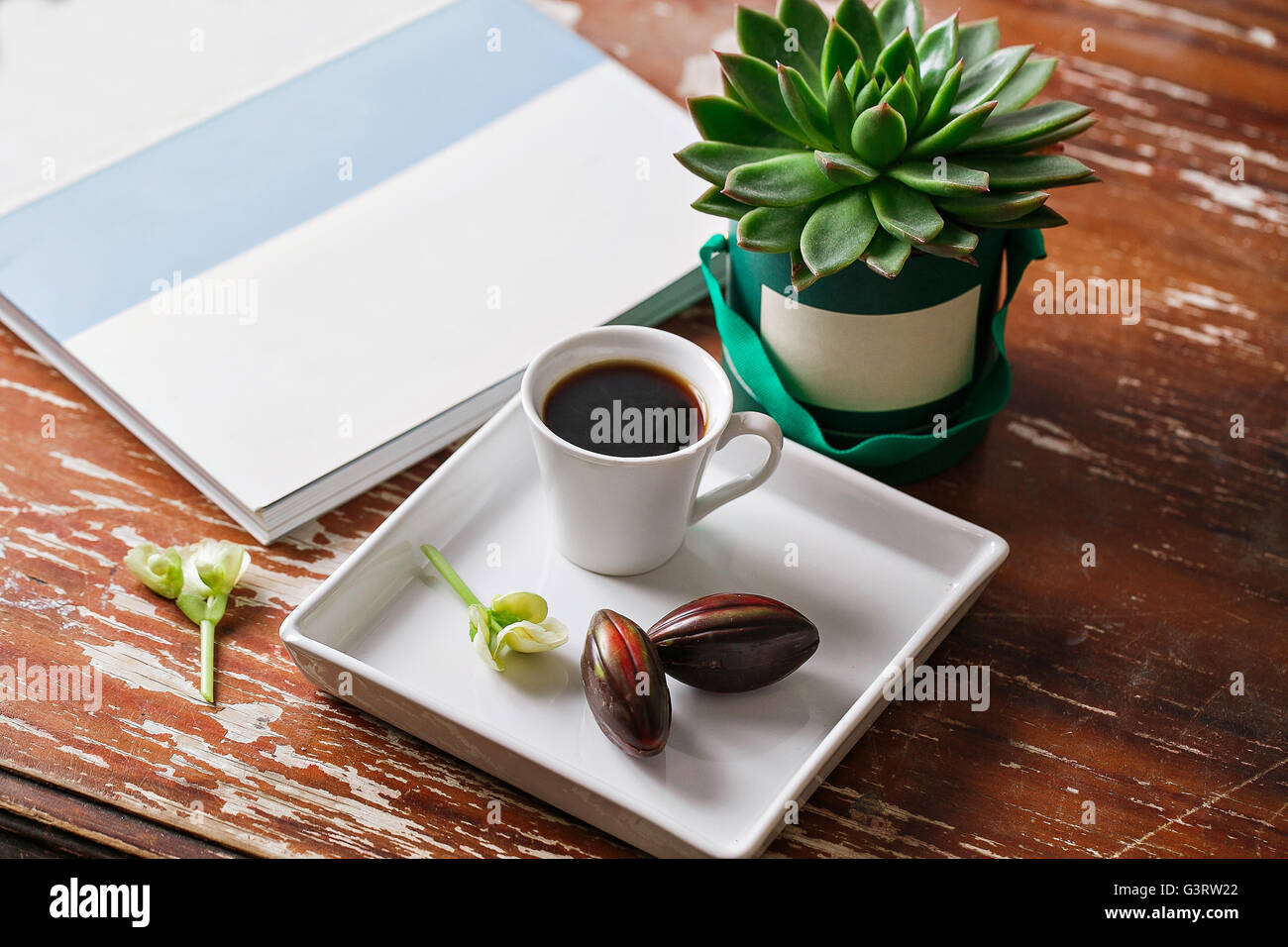 Cup of coffee and cactus on green box background. wooden table Stock Photo