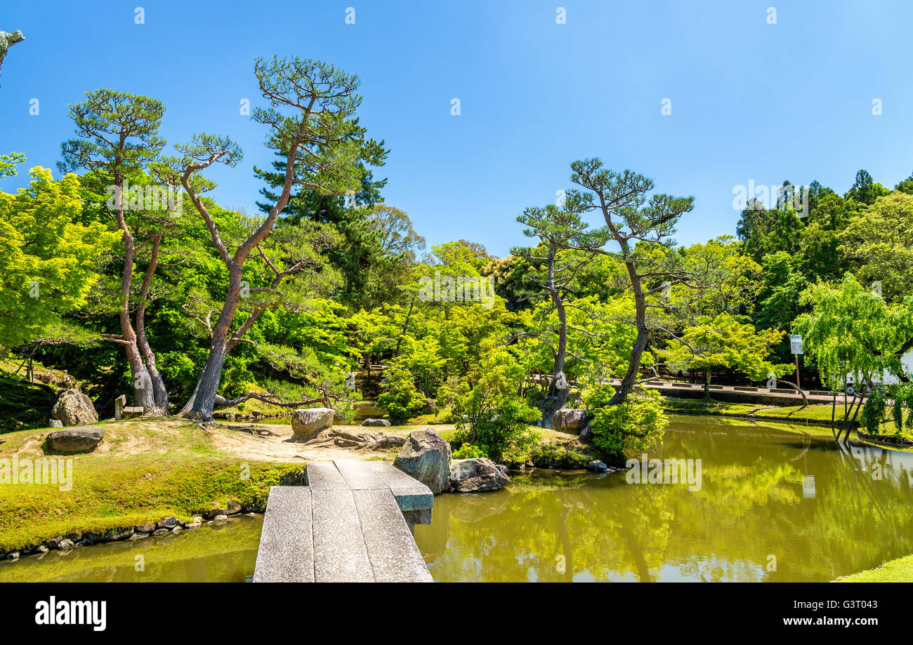 Grounds of Nara Park in Kansai Region - Japan Stock Photo