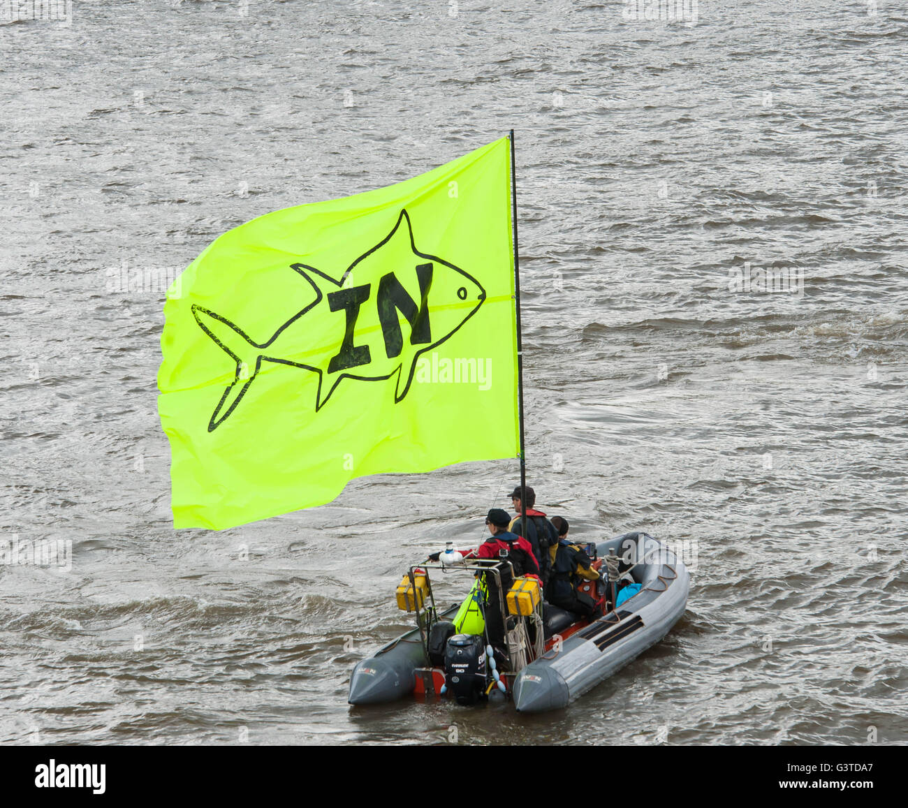 London UK.  15th June 2016  Ukip leader Nigel Farage lead a flotilla to Tower Bridge in a Brexit to coincide with - Stock Image