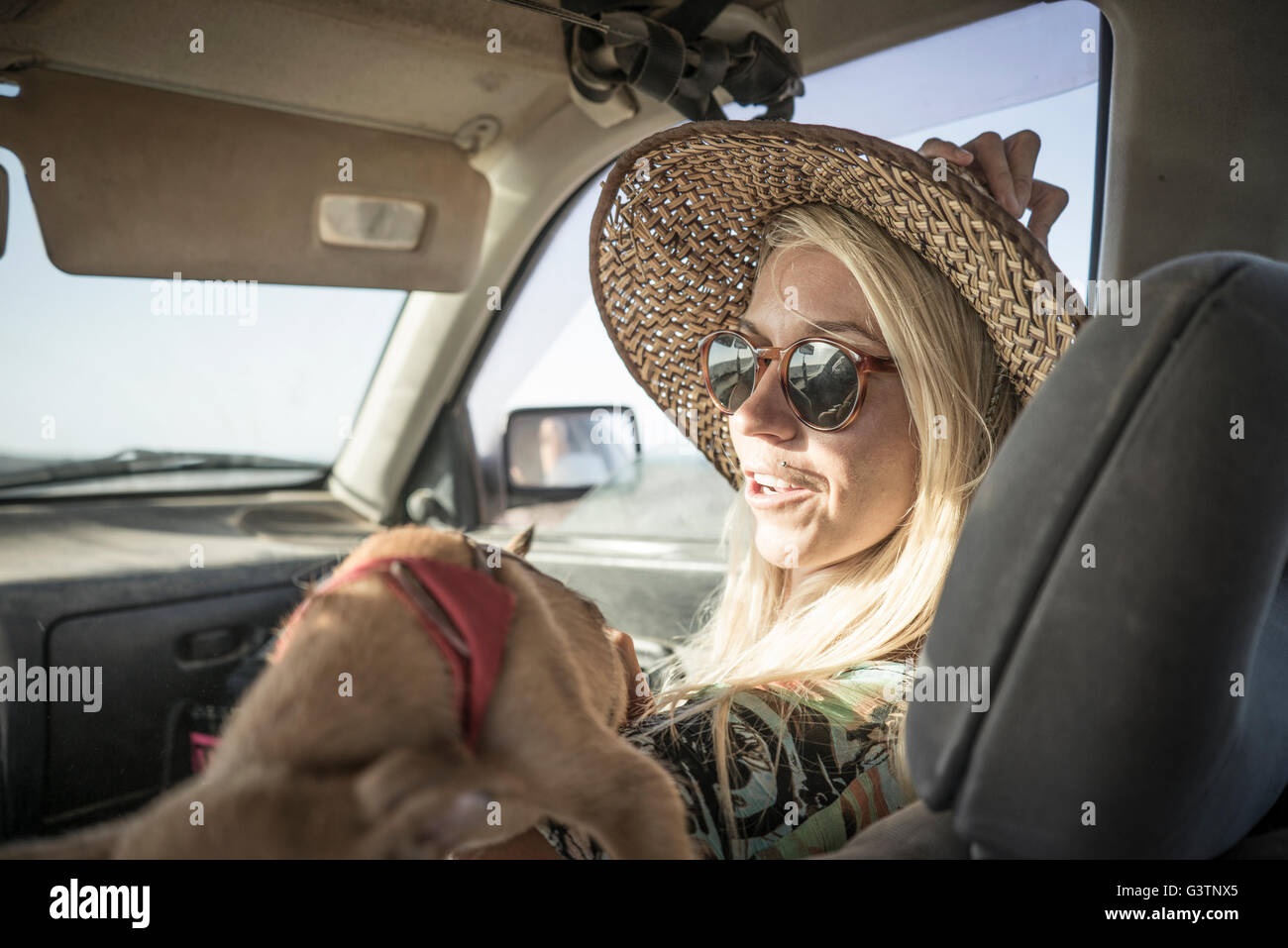 A female surfer sitting in a car with a dog at Corralejo in Fuerteventura. - Stock Image