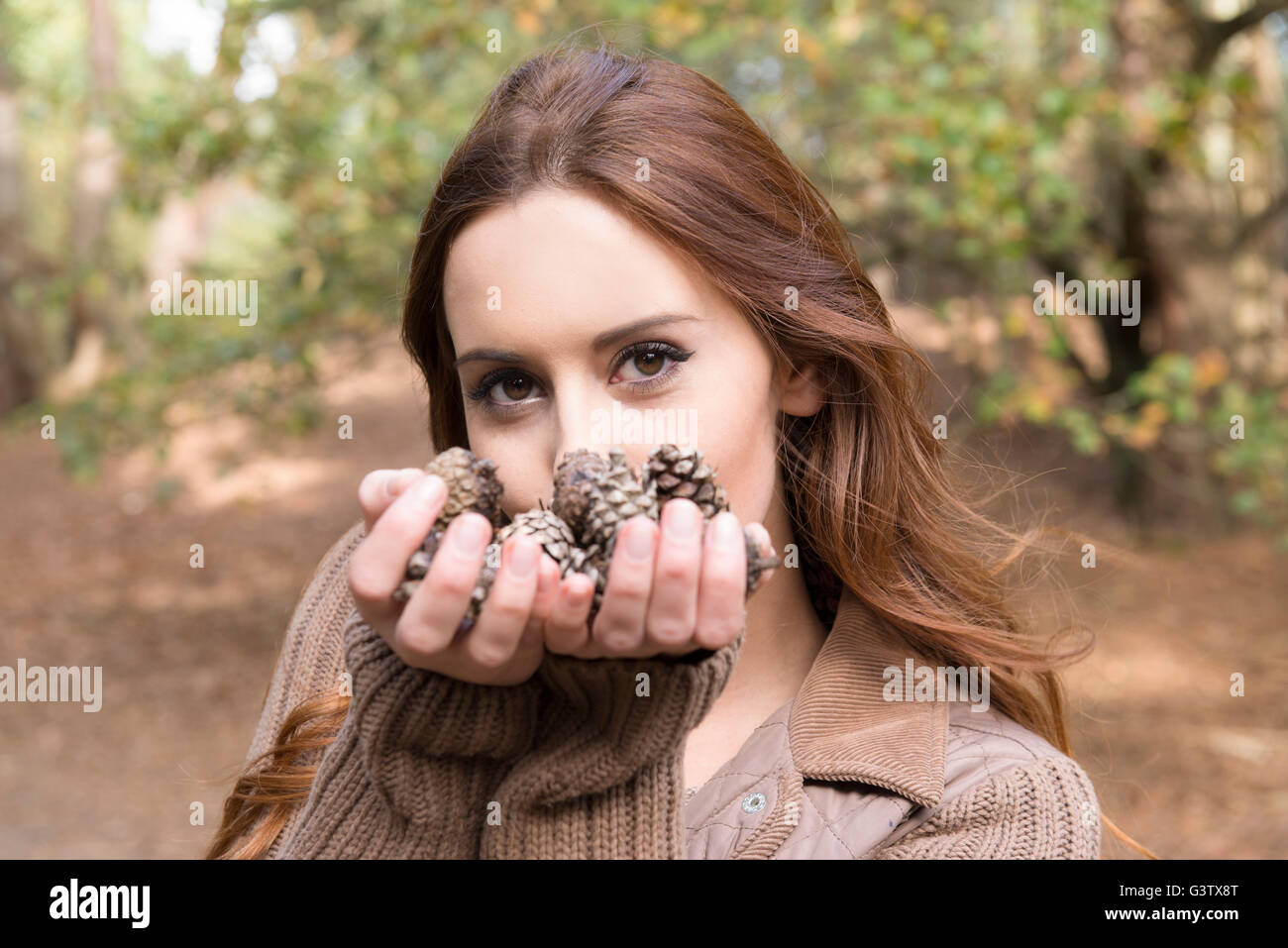 A young woman standing with a handful of pine cones in a forest in Autumn. - Stock Image