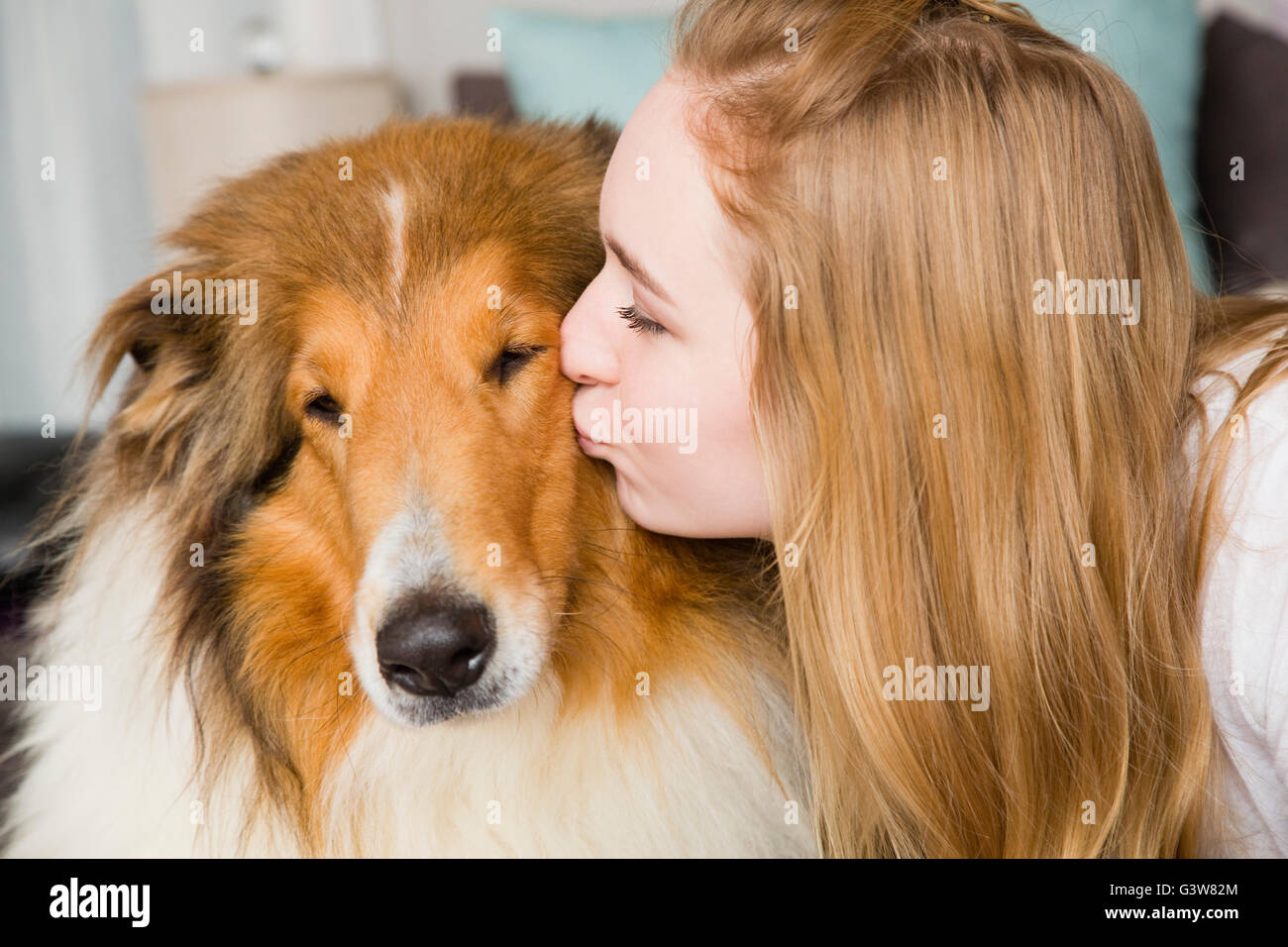 Teenage girl (14-15) kissing collie dog - Stock Image