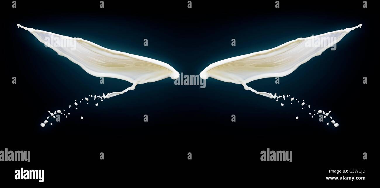 Wings on black background made of splashes of milk. - Stock Image