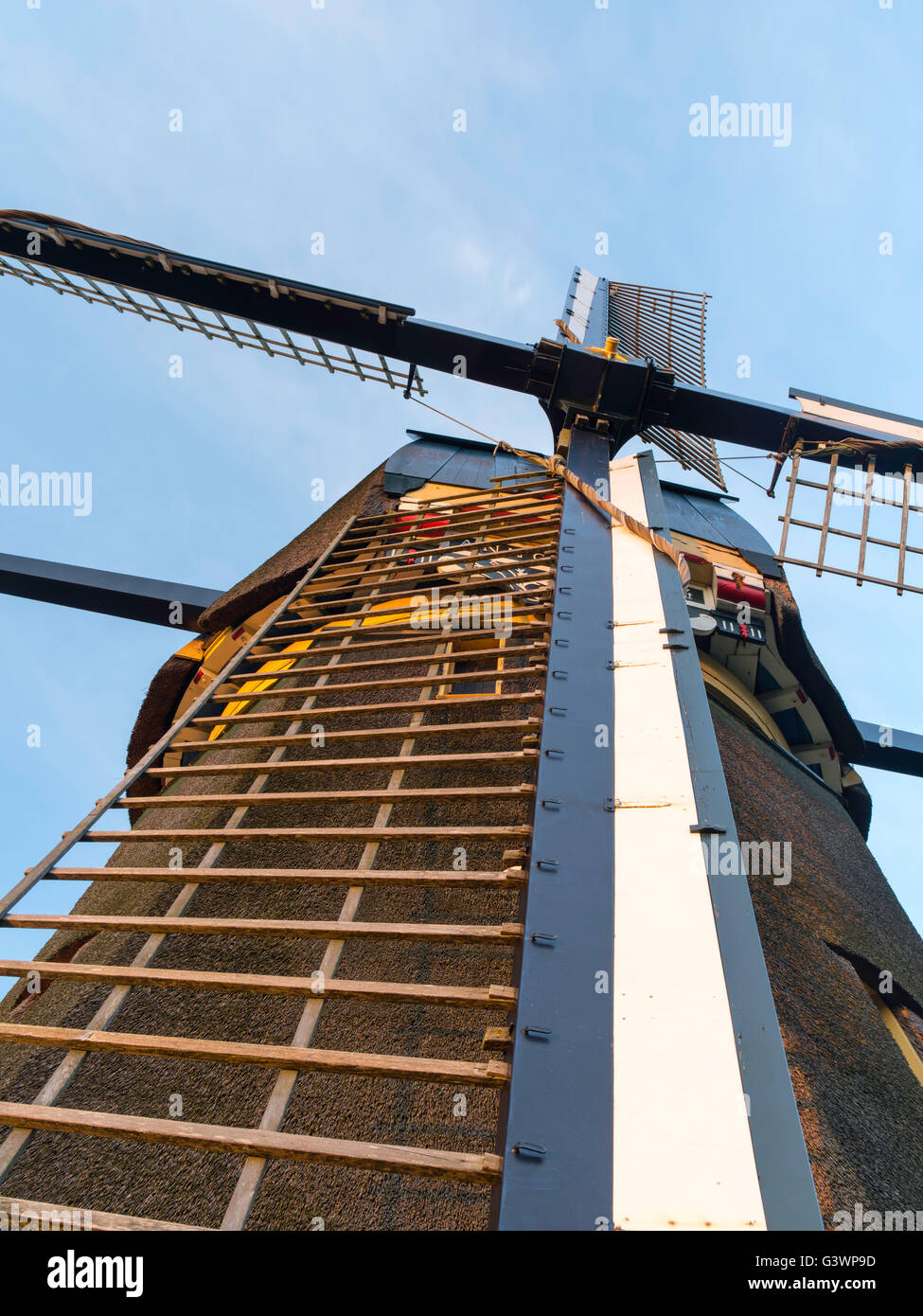 The famous Delphine/De Oostzijdse Molen windmill on the River Gein, near Abcoude, Utrecht, The Netherlands. Paintings - Stock Image