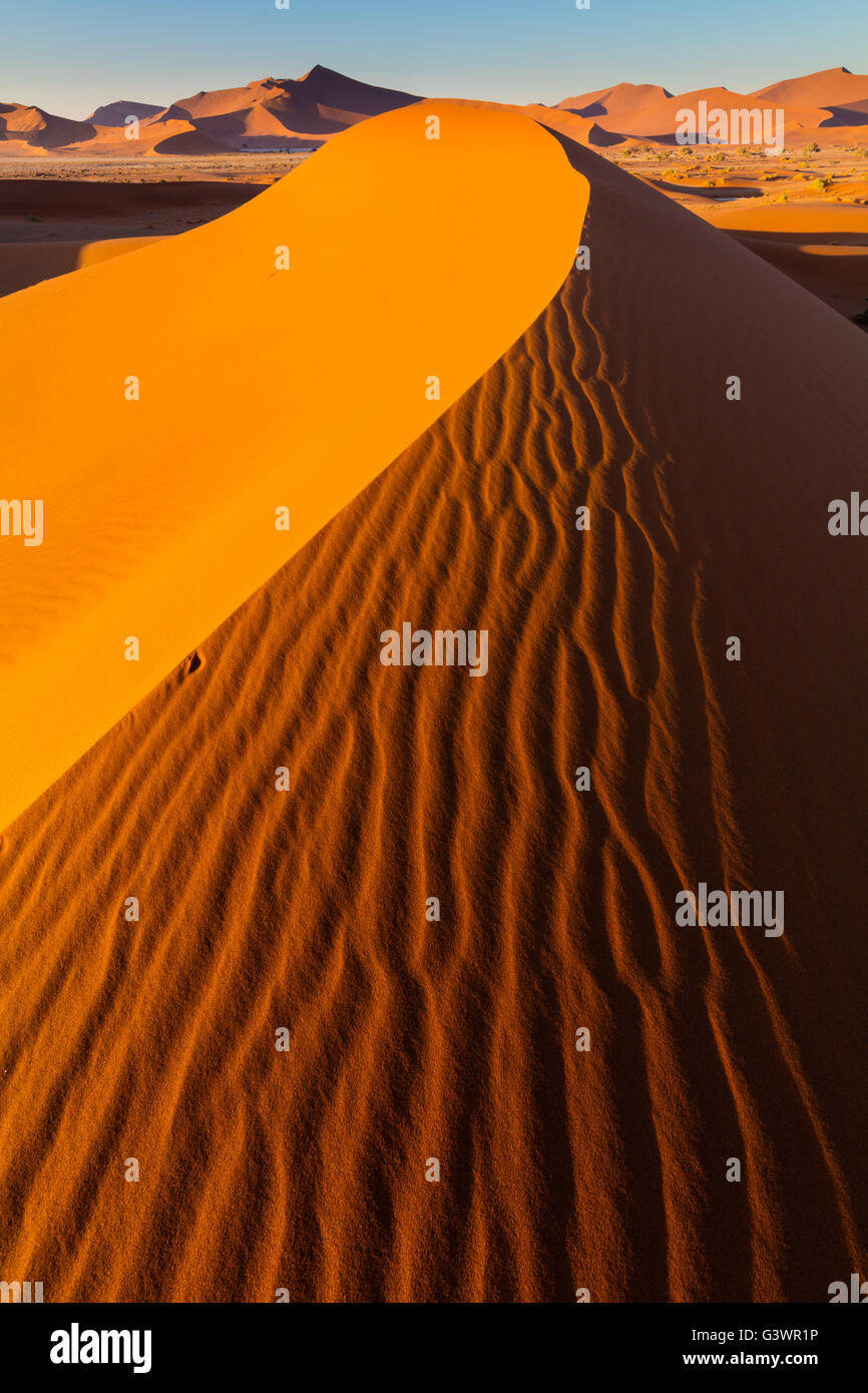 Sossusvlei is a salt and clay pan surrounded by high red dunes, located in the in the Namib-Naukluft National Park - Stock Image
