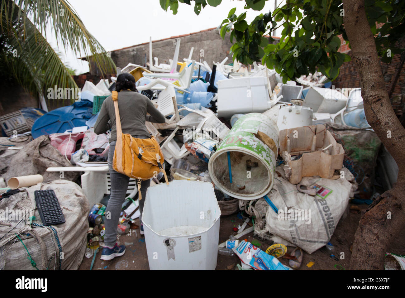 Entomologists collecting mosquitos in an infested area of dump in Natal city to be tested for Zika virus, Brazil. - Stock Image