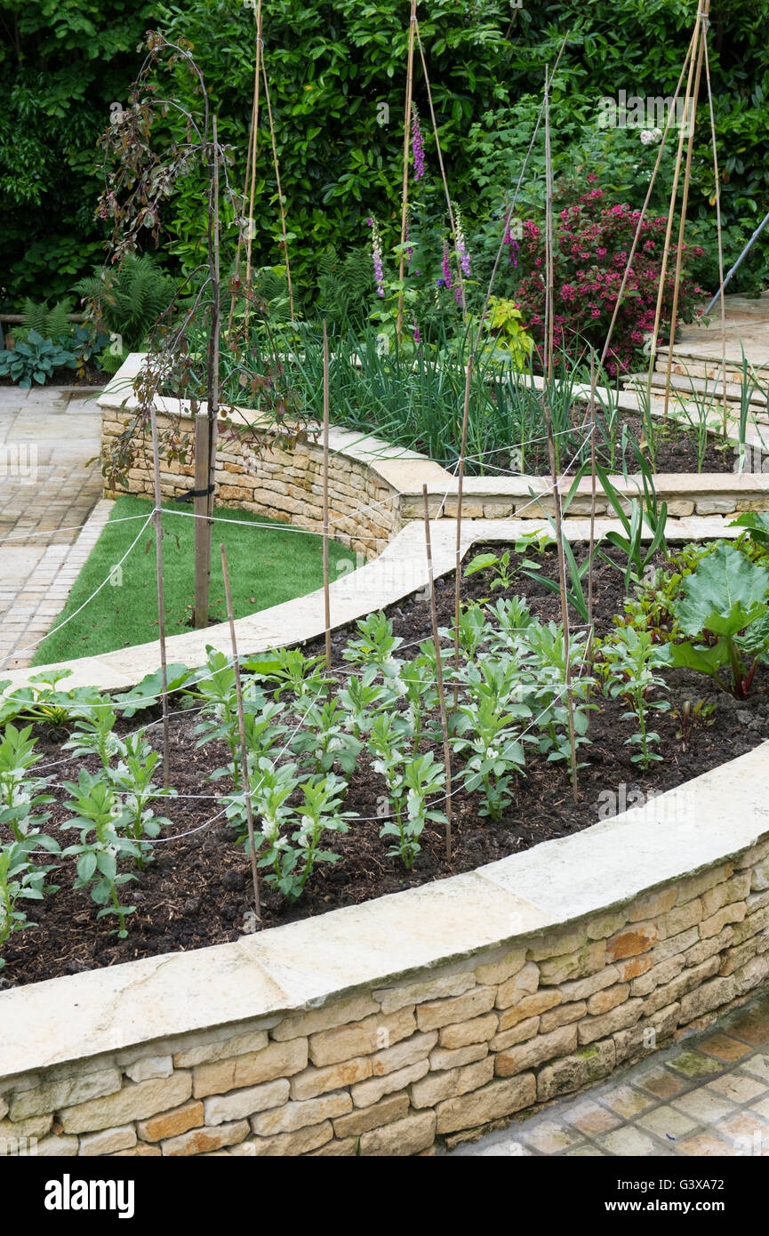 Curved Raised Vegetable Beds In An English Cottage Garden Ashton