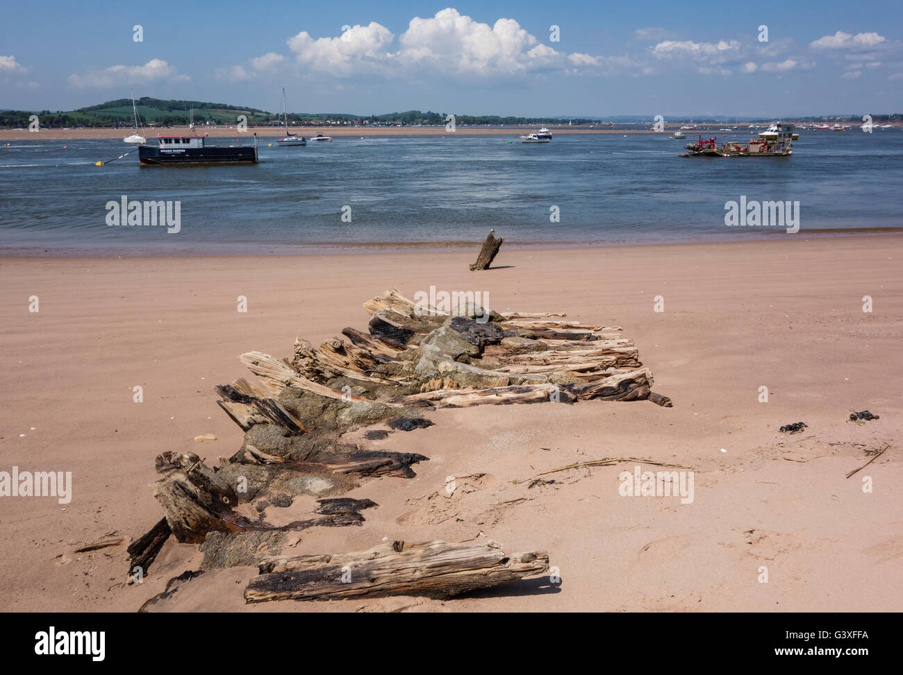 River Exe Estuary with old boat remains on Dawlish Warren, Devon, UK - Stock Image