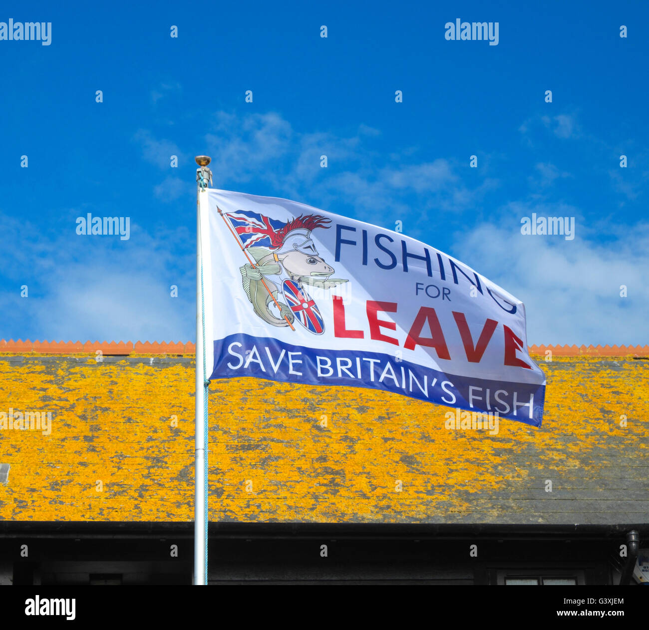 """""""Fishing for Leave"""" the EU, Brexit flag on Hastings Stade Fishermen's Beach, East Sussex, England, Great Britain, Stock Photo"""