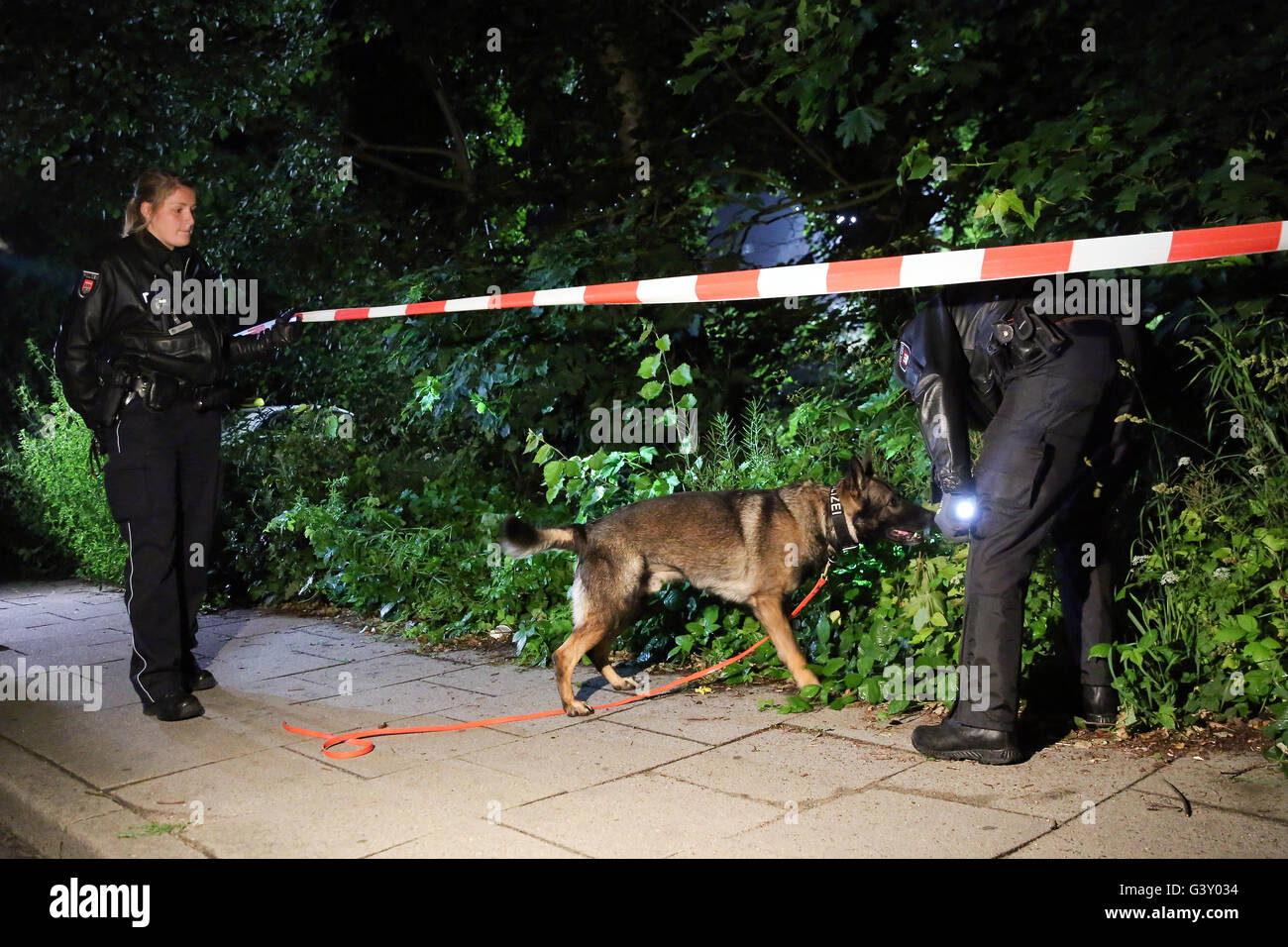 Hamburg-Schnelsen, Germany. 16th June, 2016. Policemen search for clues with a dog in front of a house, in which - Stock Image