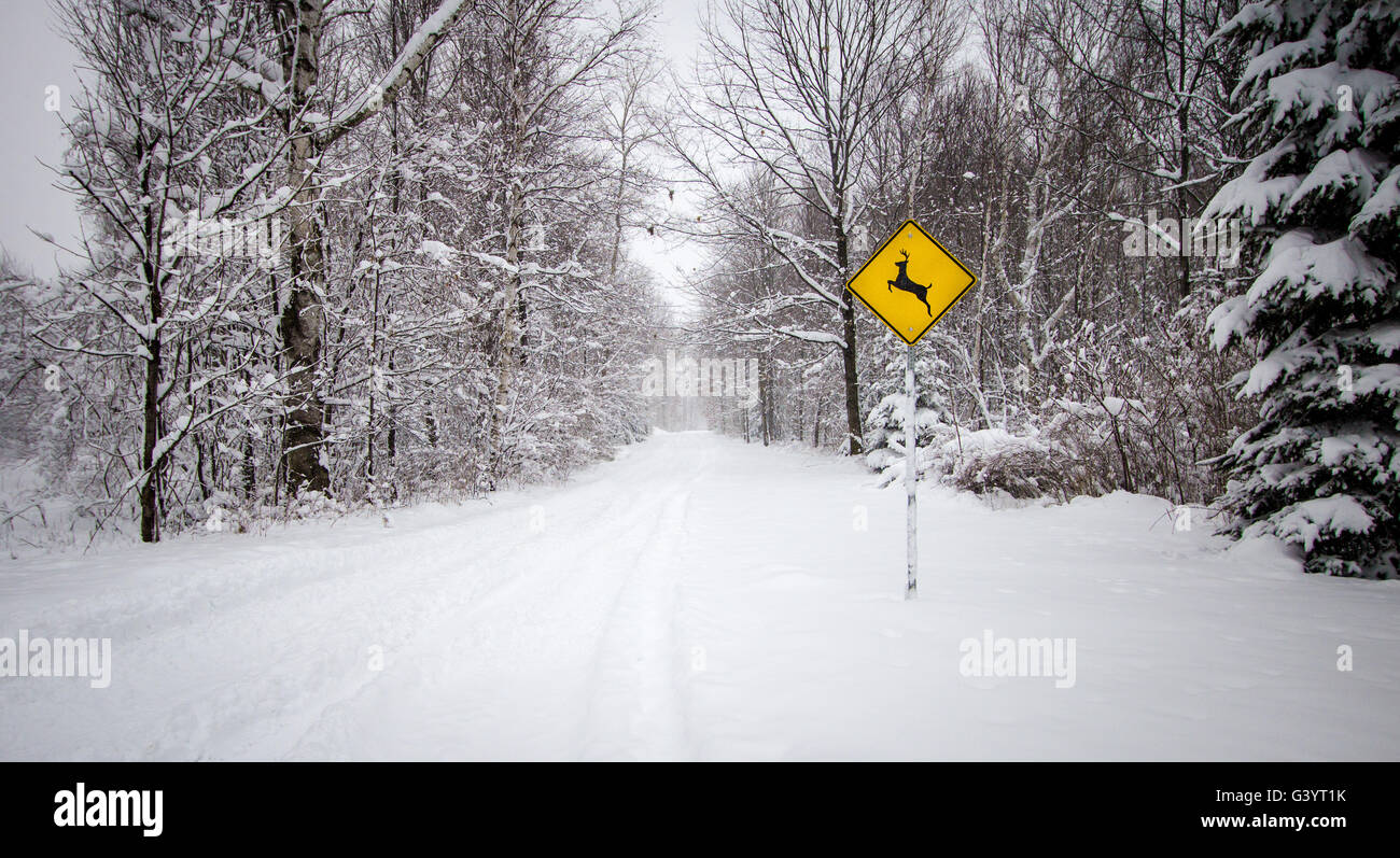 Snow Covered Road With Deer Crossing Sign. Snow covered rural road through the forest with deer crossing sign. - Stock Image