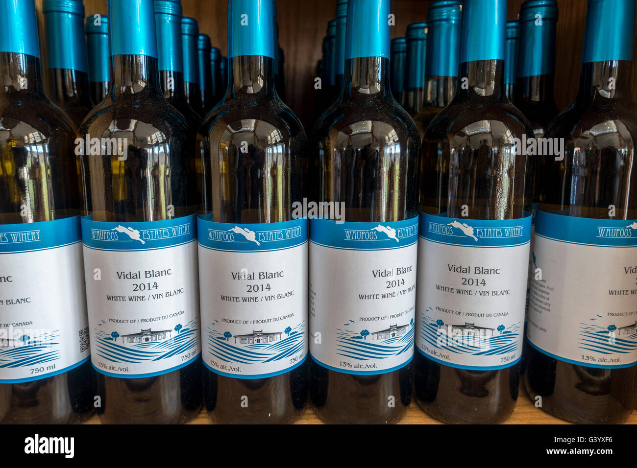 Waupoos Winery Vidal Blanc Wine Bottles For Sale On A Shelf, Waupoos Winery Is In Prince Edward County Ontario Canada - Stock Image