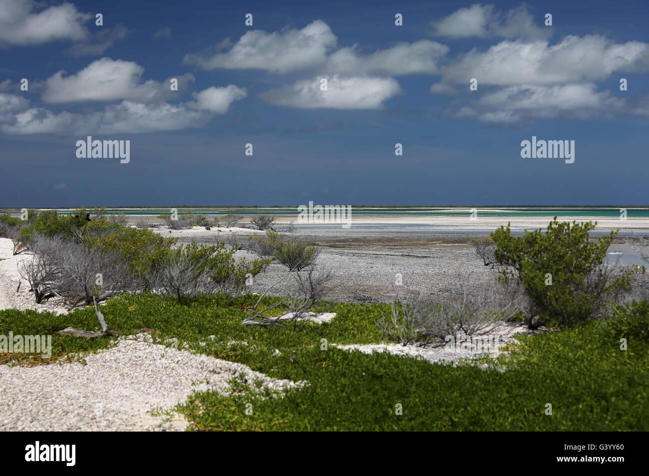 Flats in lagoon, Christmas Island, Kiribati - Stock Image