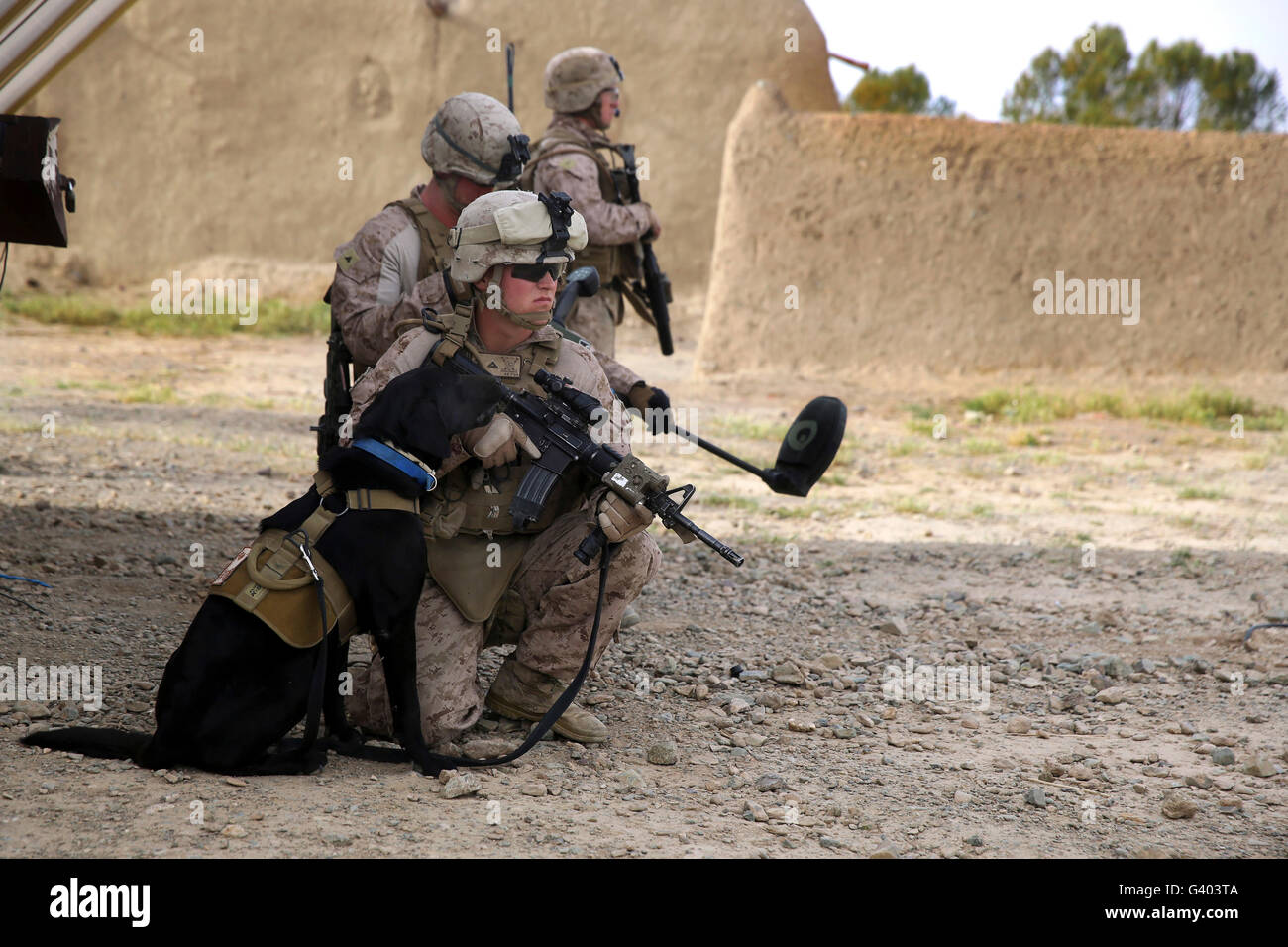 A dog handler provides security with his ID Dog by his side. - Stock Image