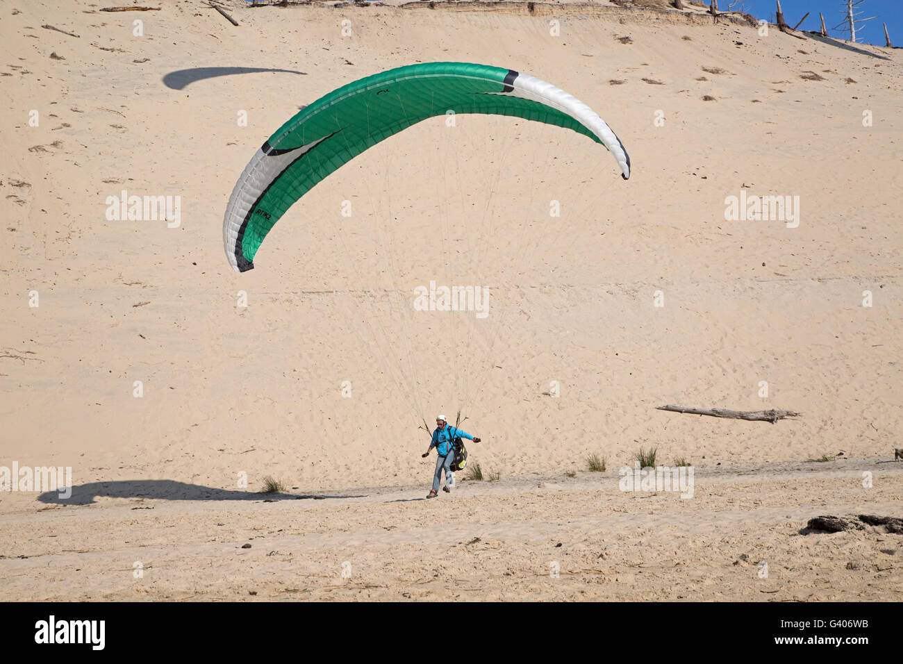 Paraglider landing on beach Dune of Pyla Southern France Stock Photo