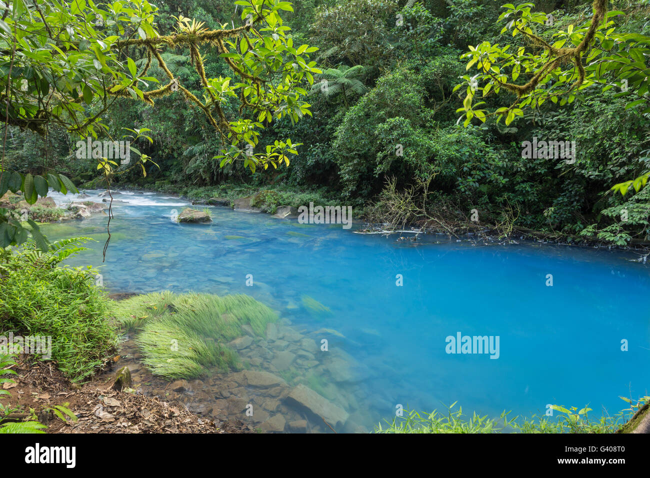 A scenic blue river view of the amazonian jungle - Stock Image