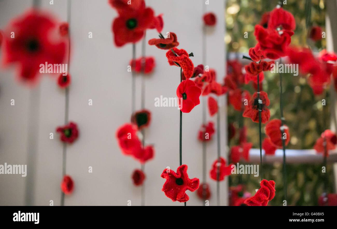 Remembrance Day poppy decoration, Melbourne, Australia - Stock Image