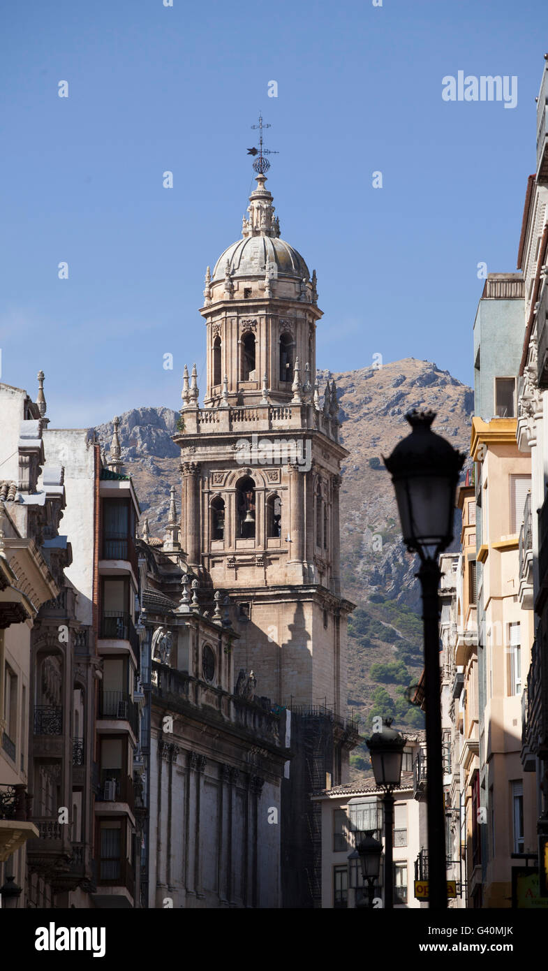 Avenida Bernabe Soriano and the cathedral, town of Jaén, Andalusia, Spain, Europe - Stock Image