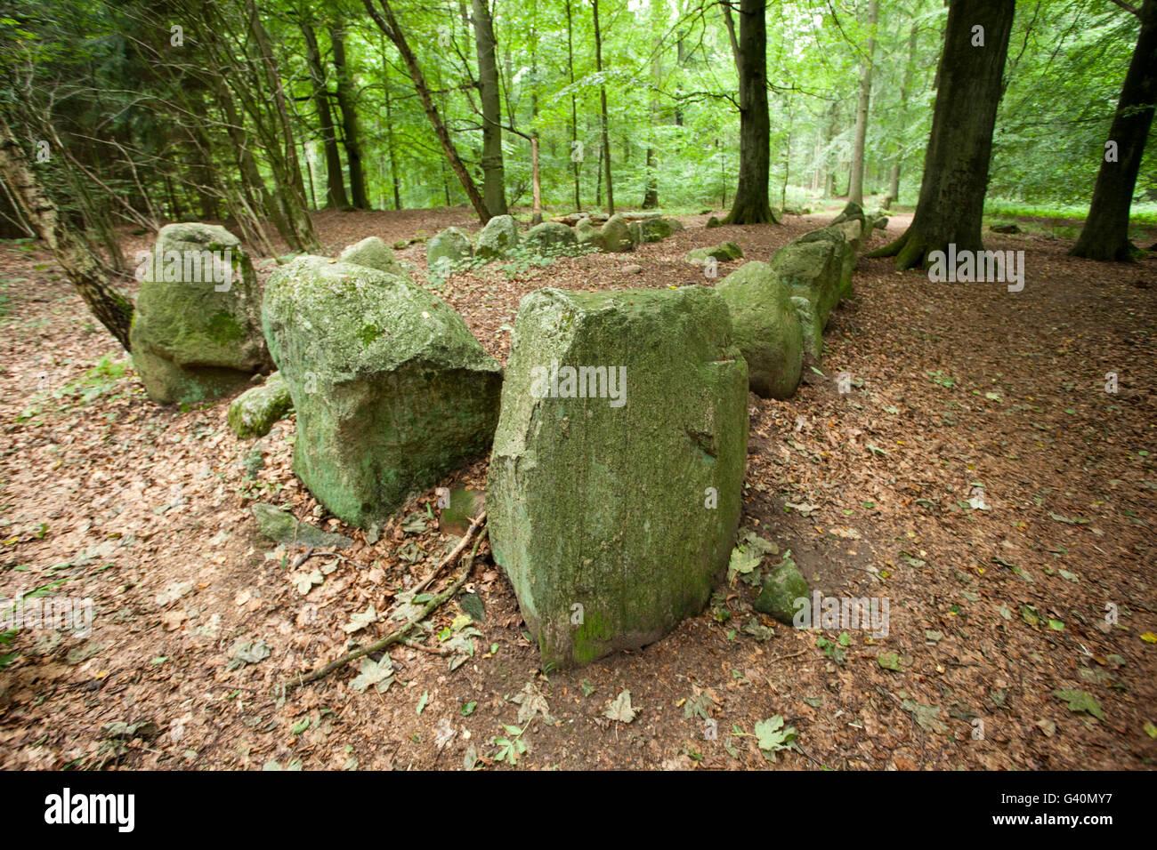 Giant's bed, Everstorfer Forest, Kluetzer Winkel, Mecklenburg-Western Pomerania - Stock Image