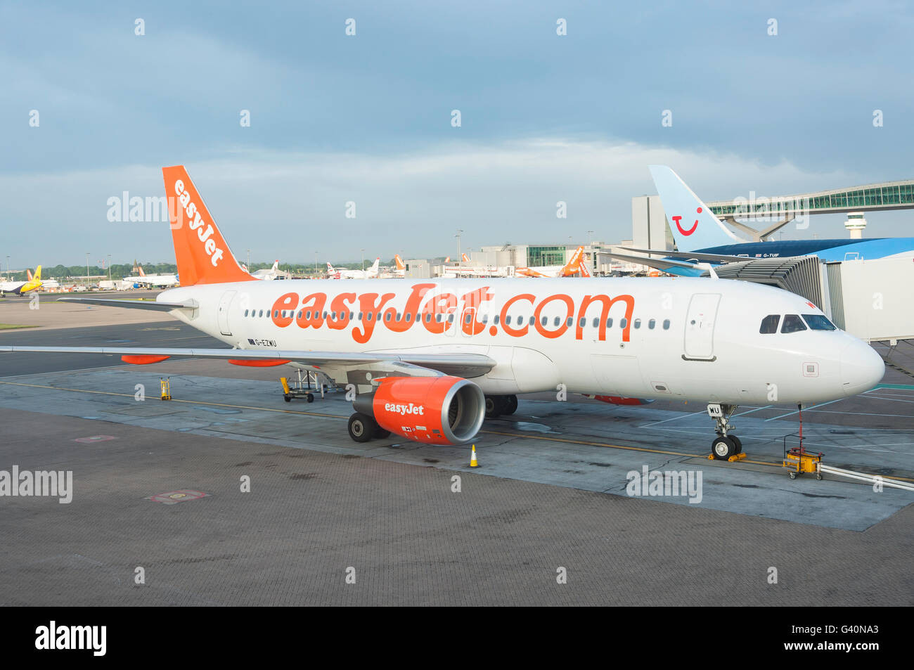 Easyjet Airbus A320 aircraft at gate, North Terminal, London Gatwick Airport, Crawley, West Sussex, England, United - Stock Image