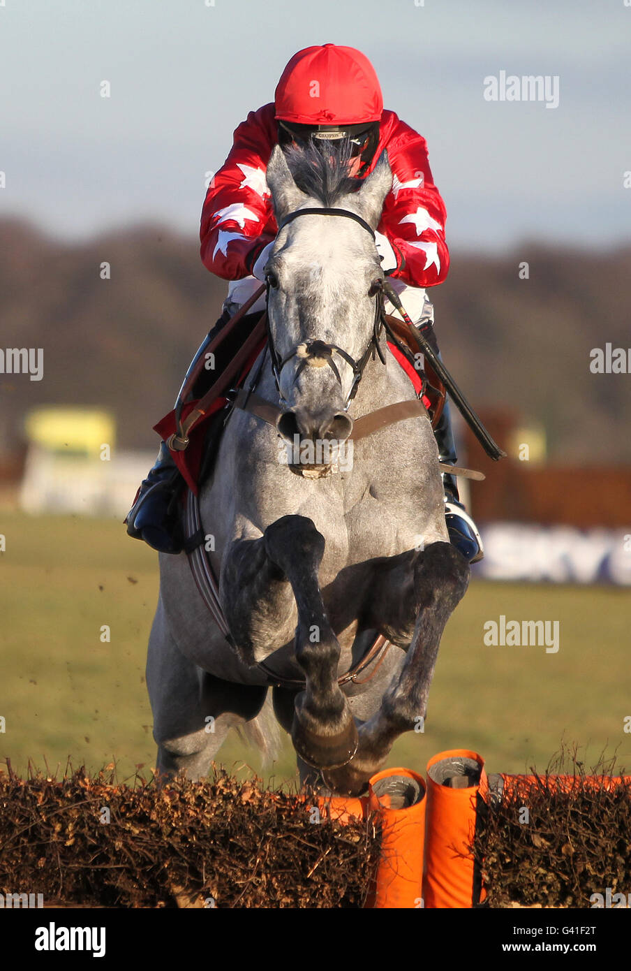 Horse Racing - Skybet Chase Meeting - Doncaster Racecourse - Stock Image