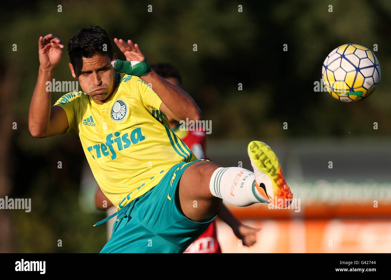 Sao Paulo, Brazil. 06th July, 2016. TRAINING OF TREES - The player Jean, the SE Palmeiras, during training, the Stock Photo