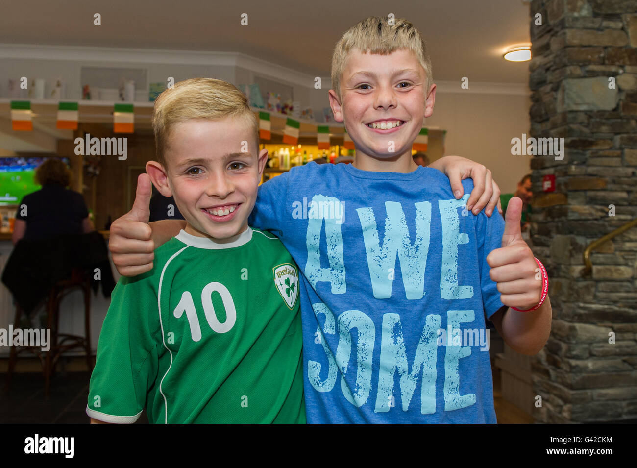 Skibbereen, West Cork, Ireland. 18th June, 2016. Ireland fans and brothers Jason and Gary Fahy, both from Skibbereen, - Stock Image