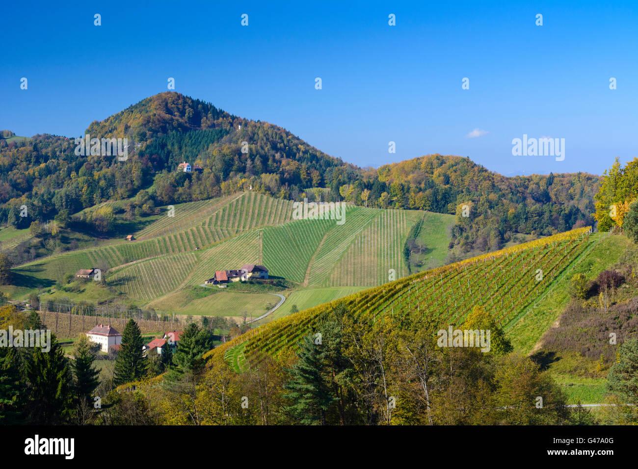 38. Schlossberger Wandertag | Sdsteirische Weinstrae