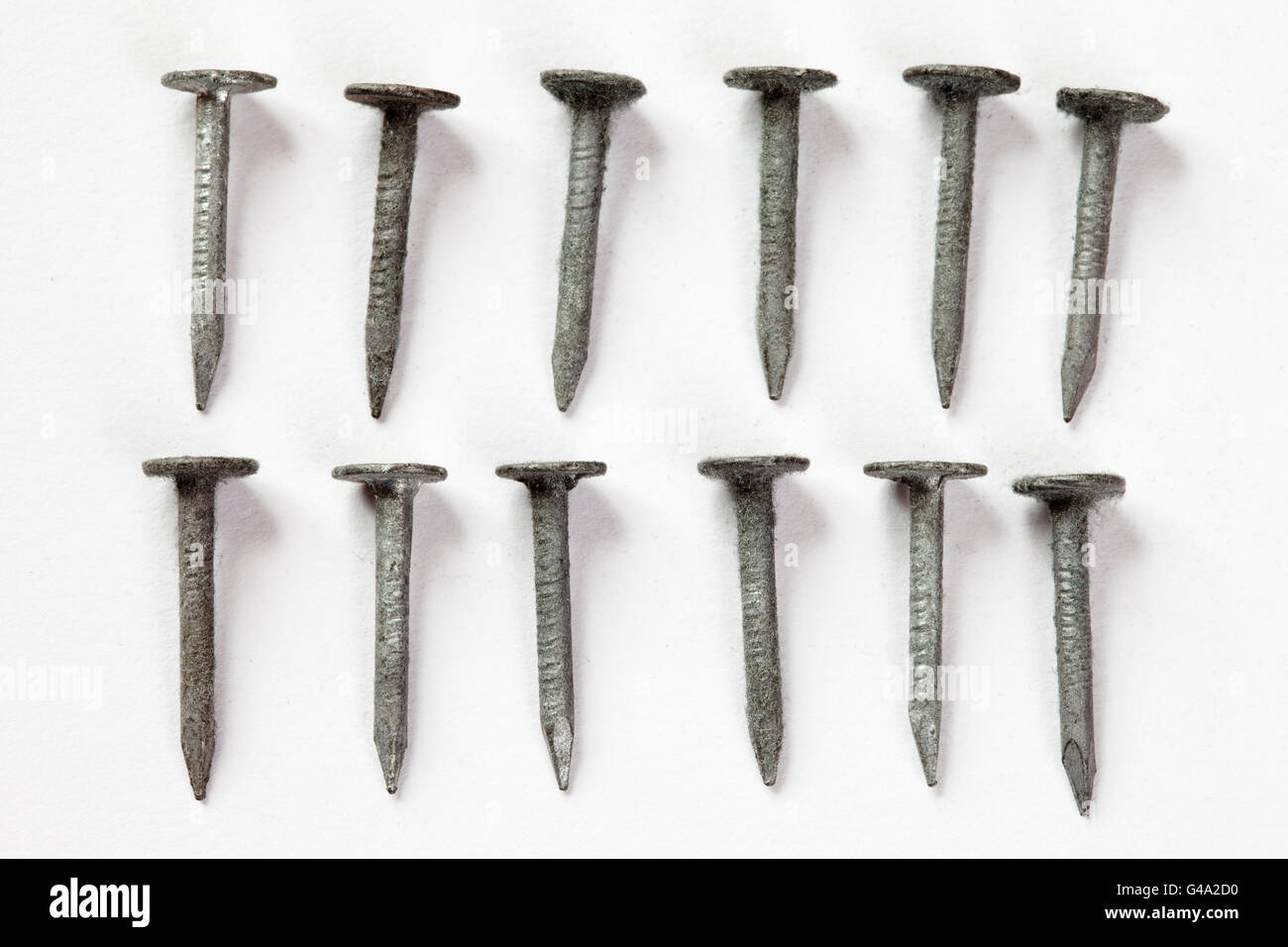 Galvanized roofing nails - Stock Image