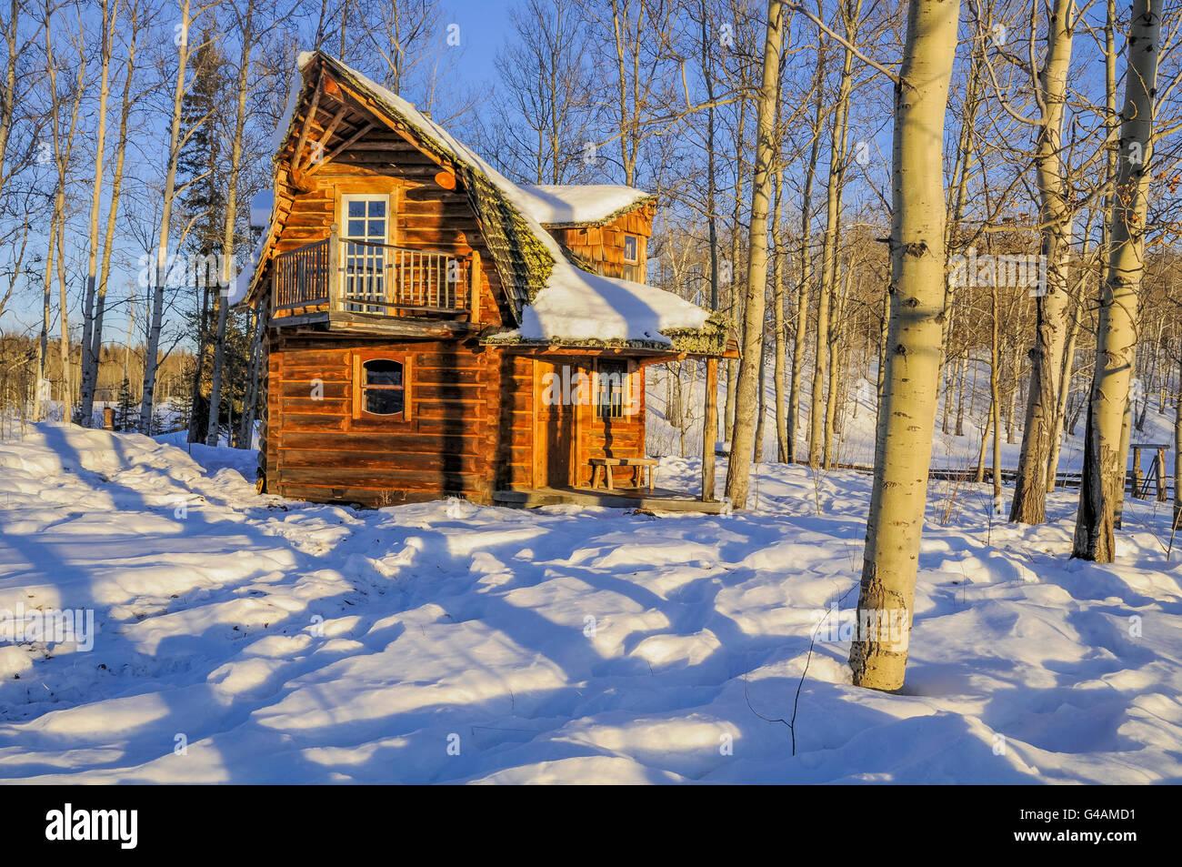 Funky log cabin in winter, Cariboo Region, British Columbia, Canada - Stock Image