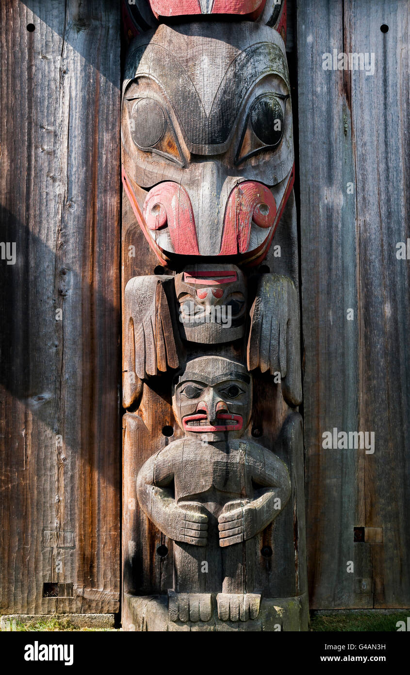 First Nation, Haida, Totem pole,featuring beaver head, Thunderbird Park, Royal British Columbia Museum, Victoria, - Stock Image