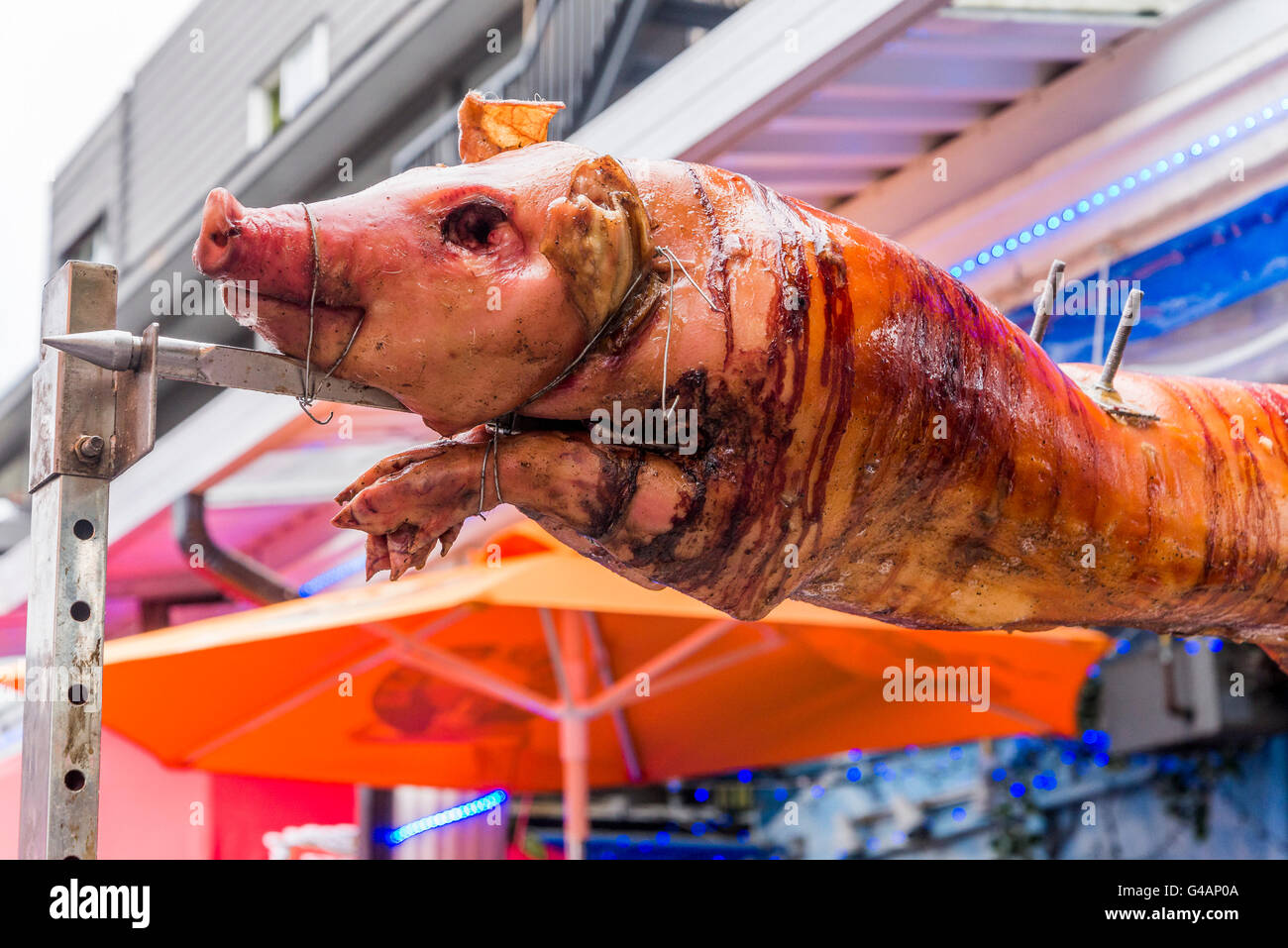 Roasting pig on a spit. - Stock Image