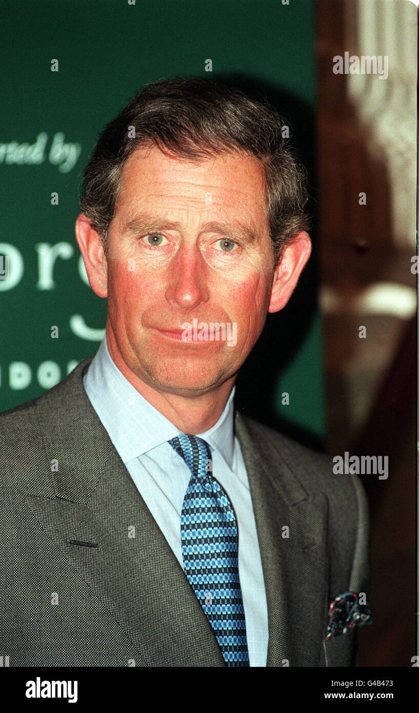 THE PRINCE OF WALES : PORTRAIT Stock Photo