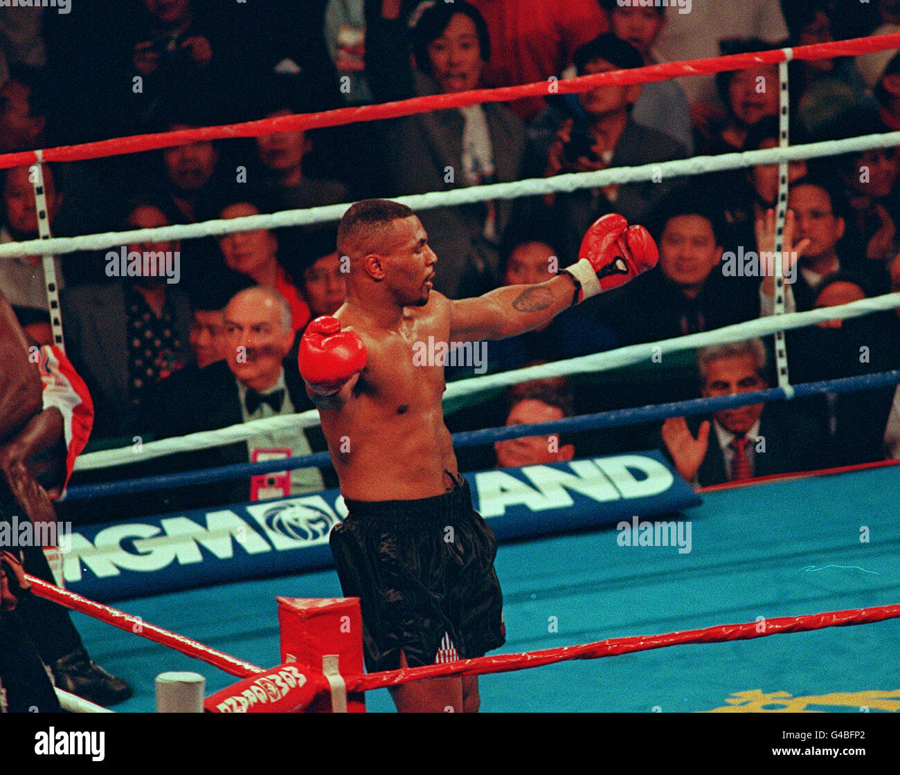Mike Tyson Boxing Stock Photos & Mike Tyson Boxing Stock