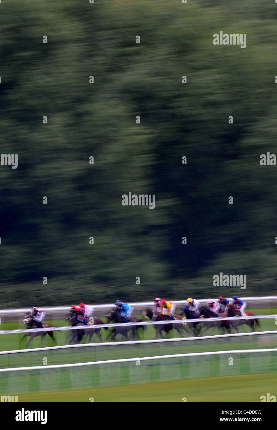 Horse Racing - Ladies Evening - Chester Racecourse - Stock Image