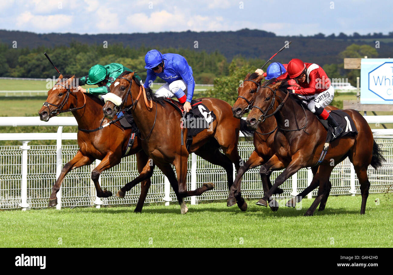 Horse Racing - Goodwood Racecourse - Stock Image