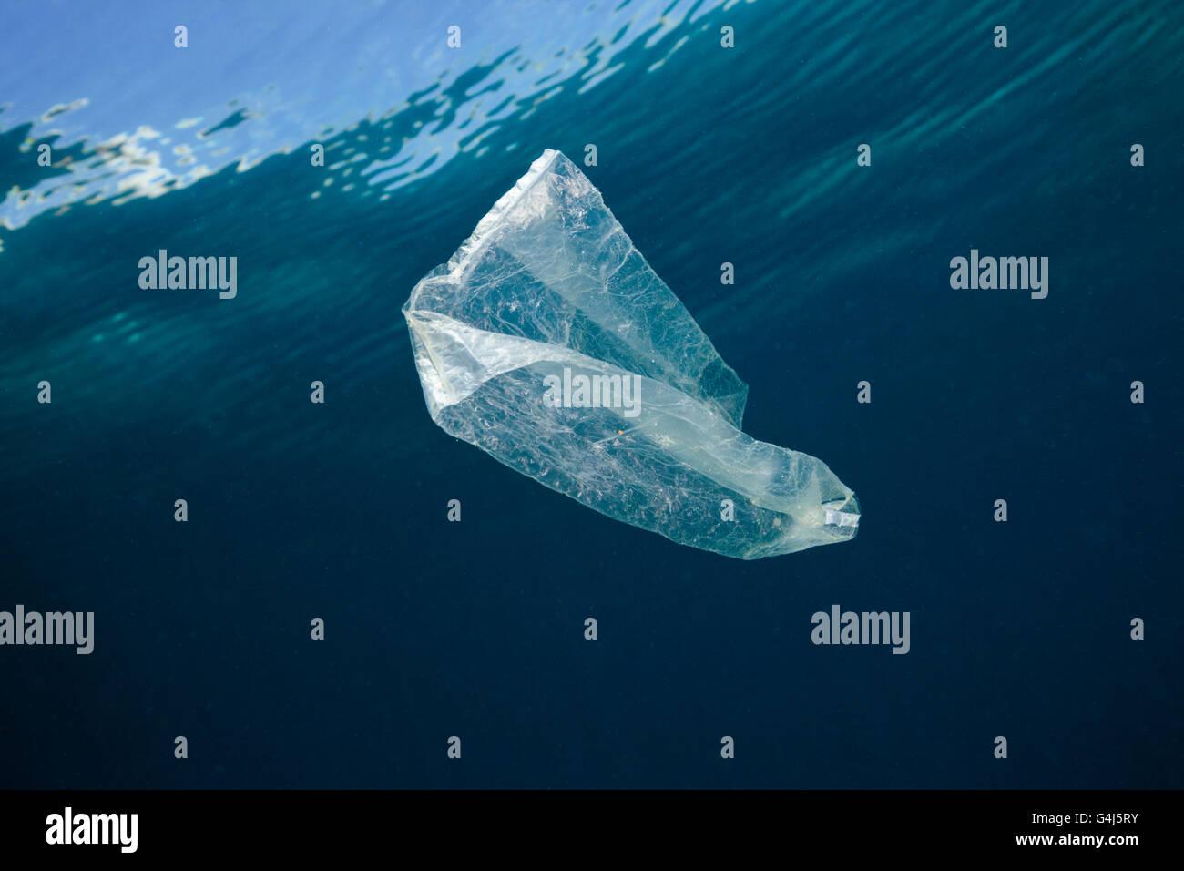 Plastic Bag adrift in Ocean, Indo Pacific, Indonesia Stock Photo
