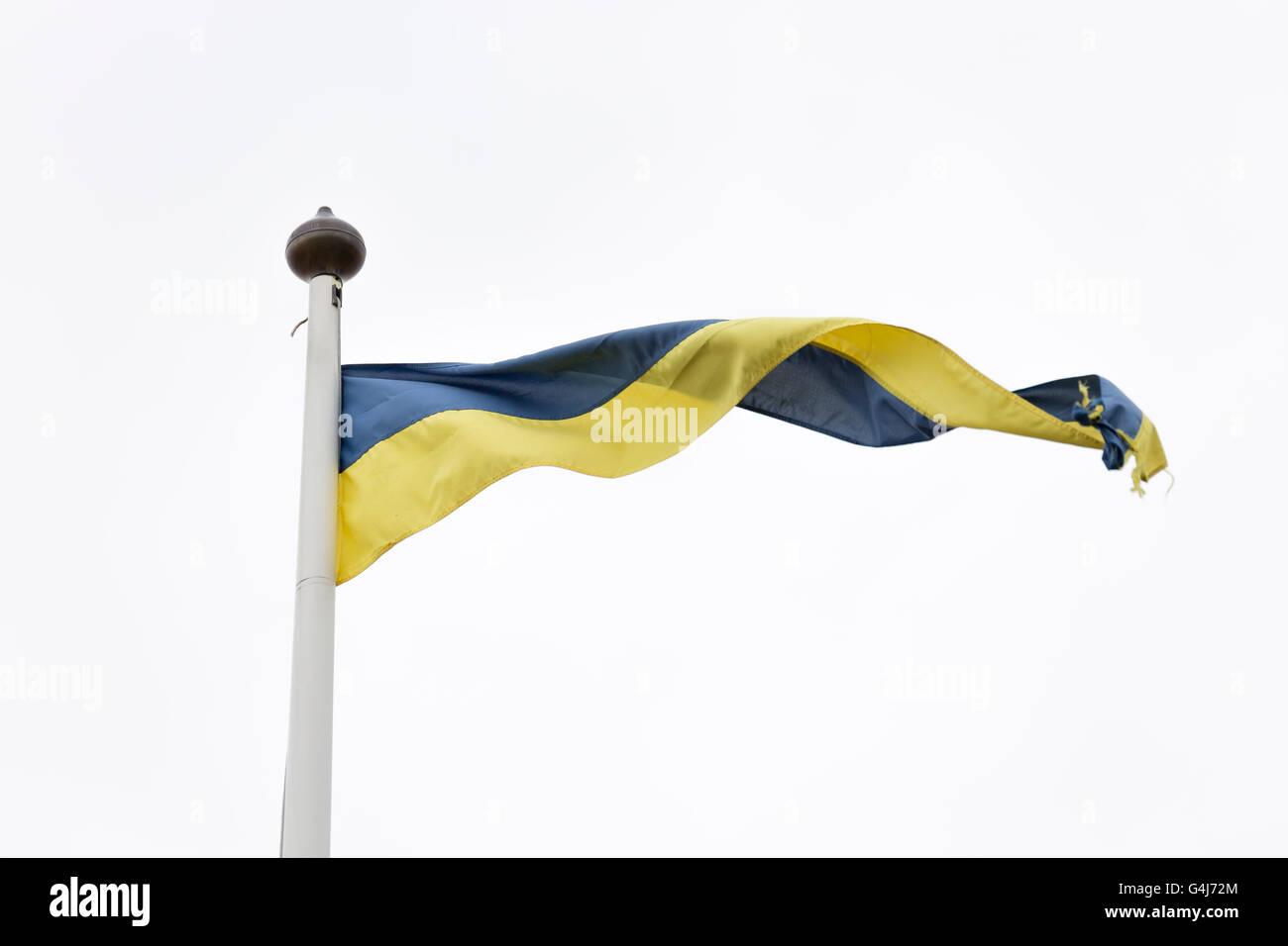 Swedish Yellow and Blue Pennant on white/grey background. - Stock Image