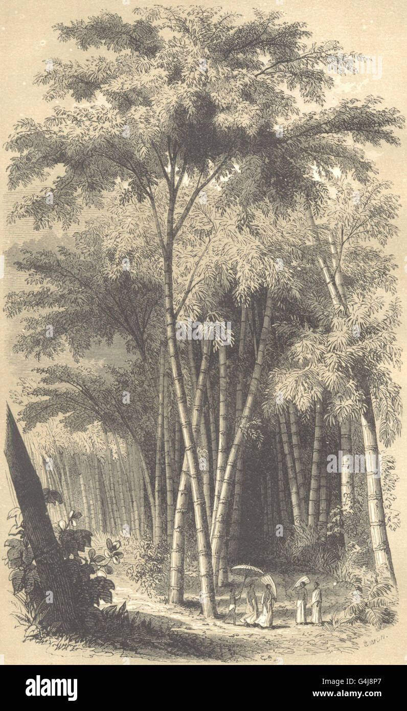 LANDSCAPES: Paysage Hindou, antique print 1852 - Stock Image