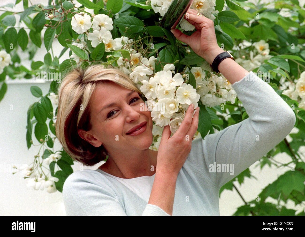 Flower Show/Ash - Stock Image